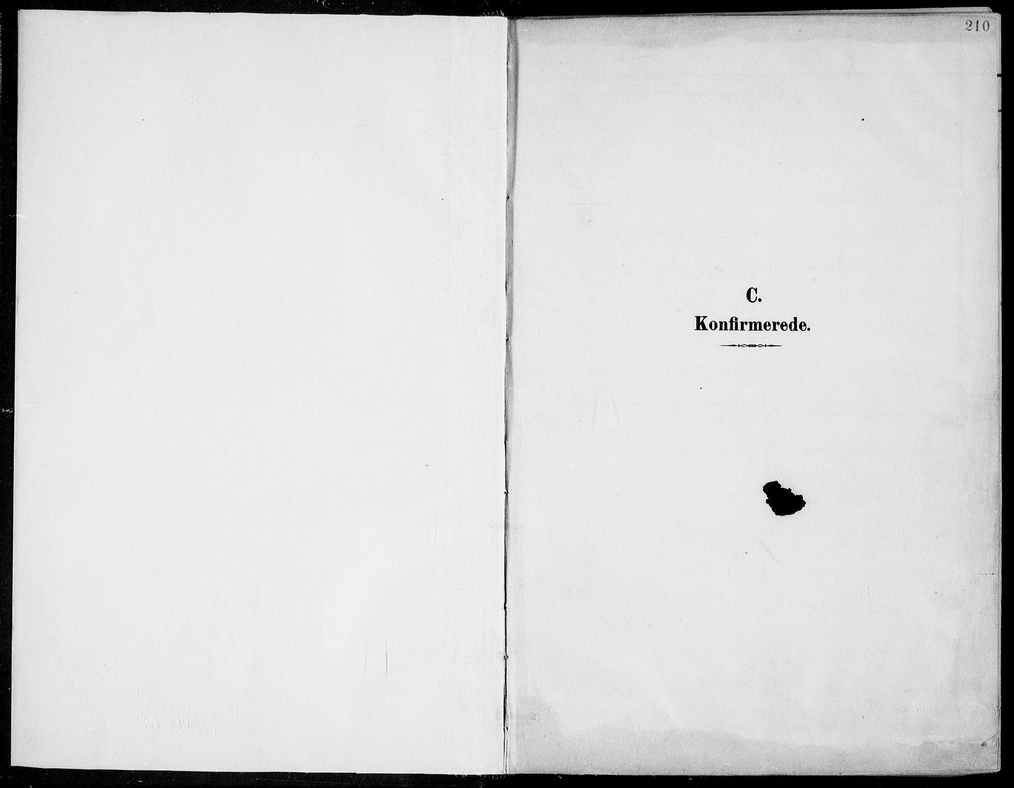 SAKO, Porsgrunn kirkebøker , F/Fa/L0011: Ministerialbok nr. 11, 1895-1919, s. 210
