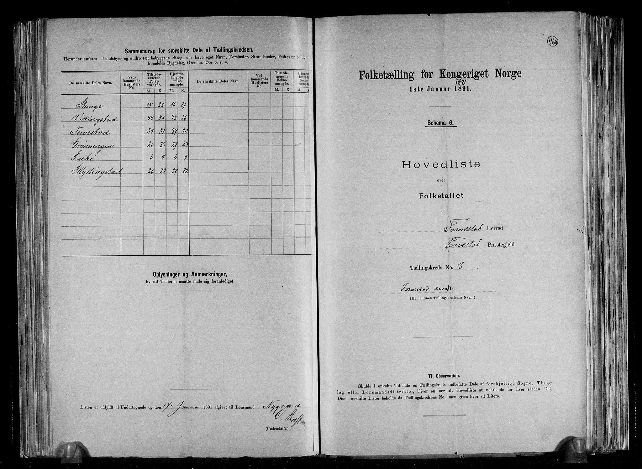 RA, Folketelling 1891 for 1152 Torvastad herred, 1891, s. 8