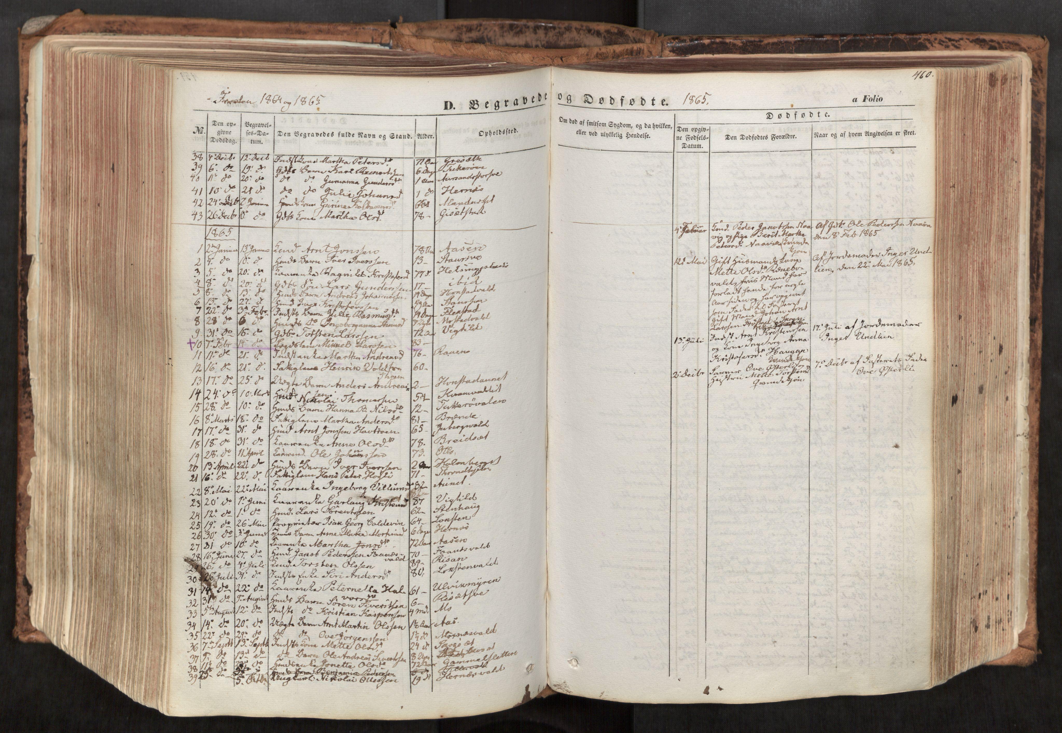 SAT, Ministerialprotokoller, klokkerbøker og fødselsregistre - Nord-Trøndelag, 713/L0116: Ministerialbok nr. 713A07, 1850-1877, s. 460
