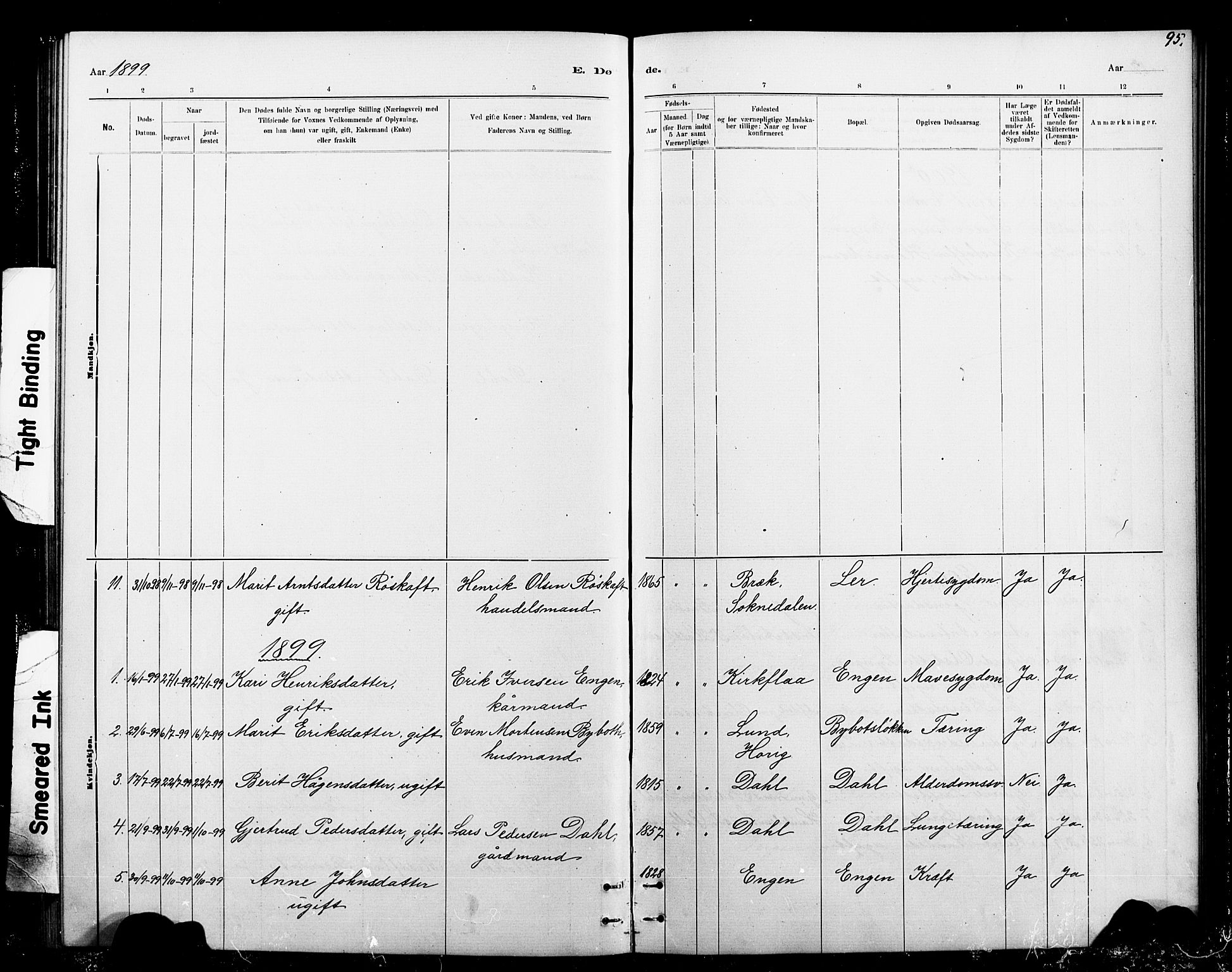 SAT, Ministerialprotokoller, klokkerbøker og fødselsregistre - Sør-Trøndelag, 693/L1123: Klokkerbok nr. 693C04, 1887-1910, s. 95