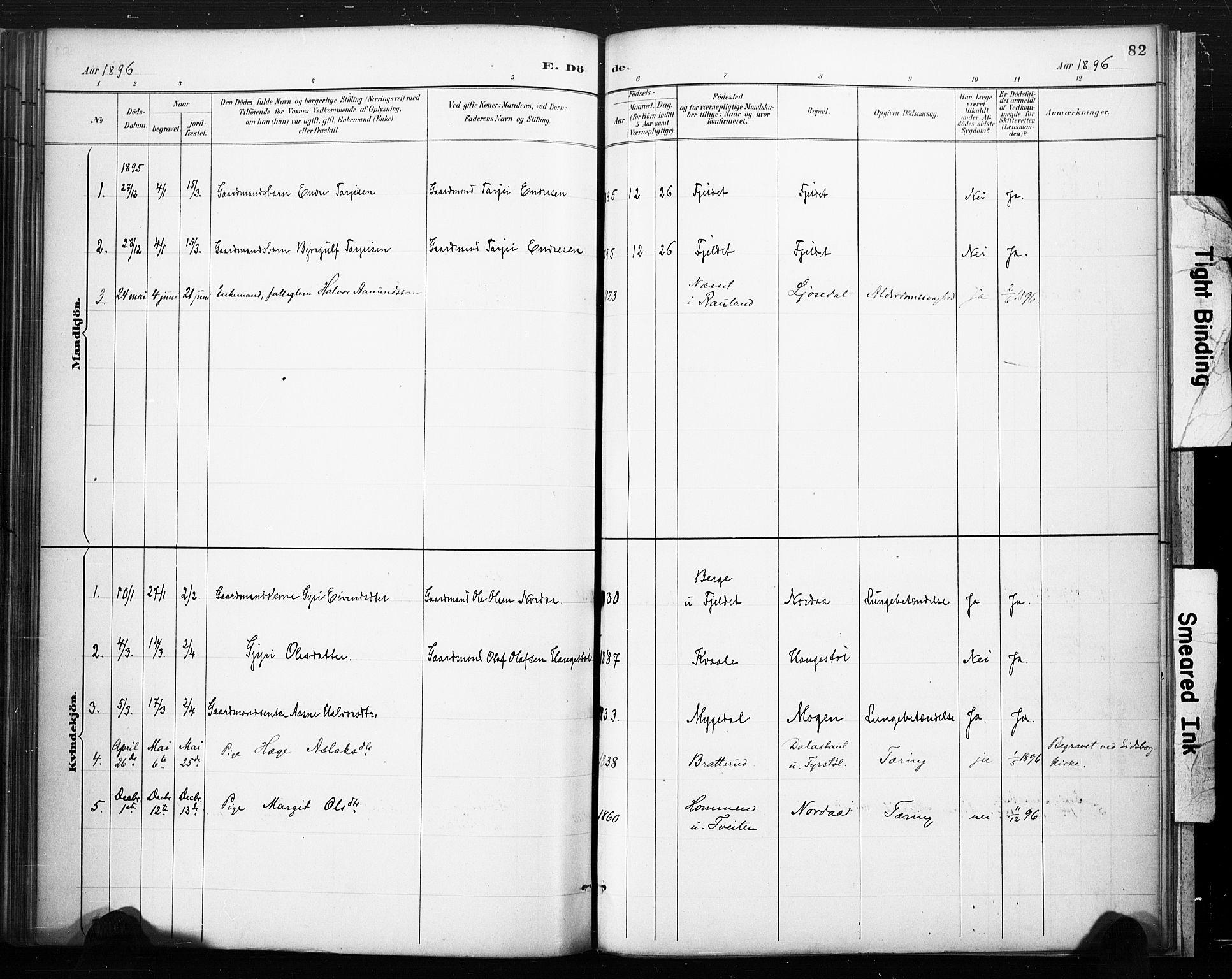 SAKO, Lårdal kirkebøker, F/Fc/L0002: Ministerialbok nr. III 2, 1887-1906, s. 82