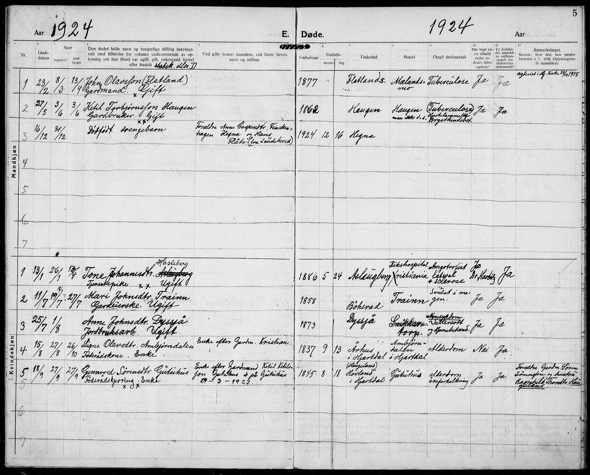 SAKO, Hjartdal kirkebøker, F/Fa/L0012: Ministerialbok nr. I 12, 1923-1930, s. 5