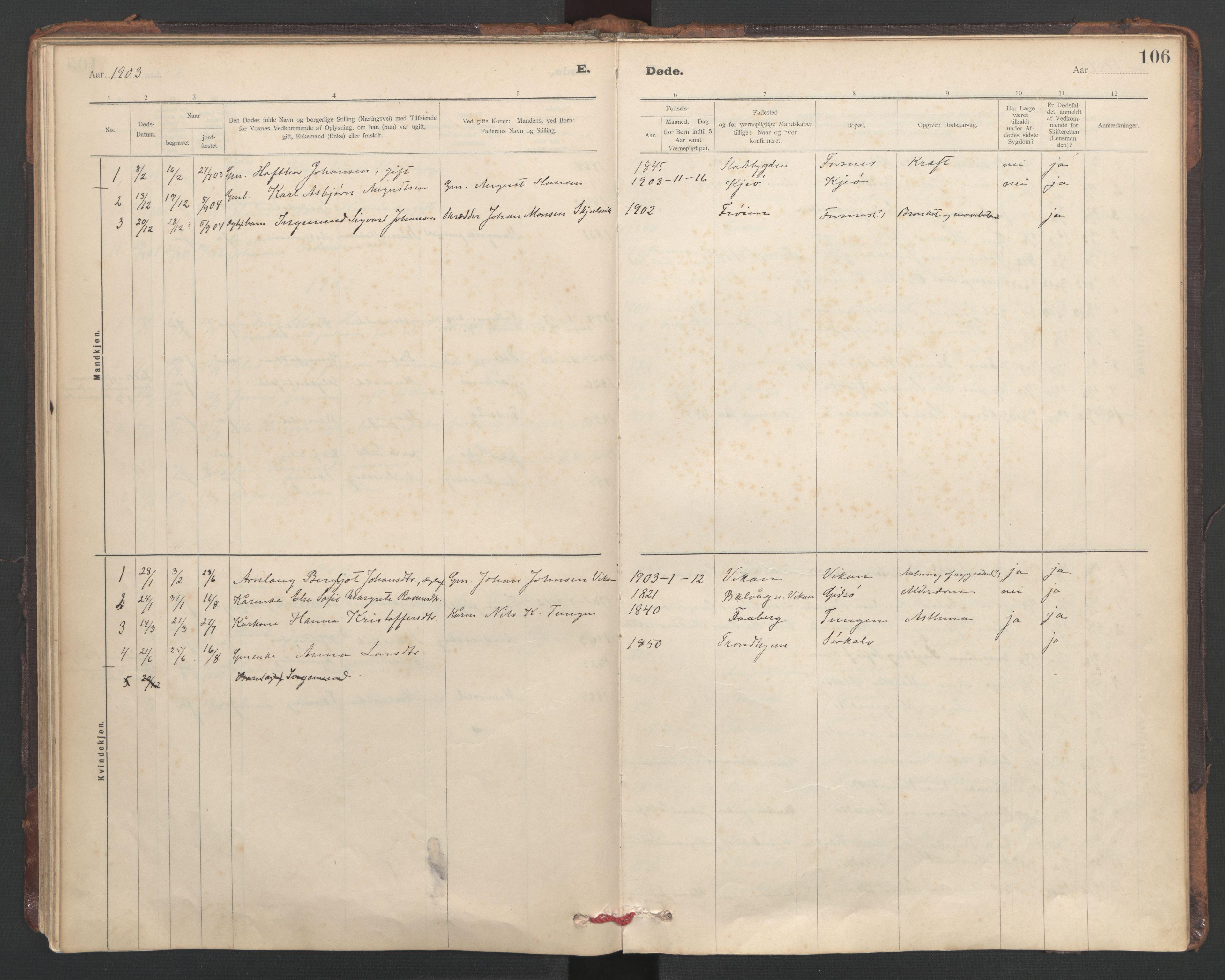 SAT, Ministerialprotokoller, klokkerbøker og fødselsregistre - Sør-Trøndelag, 635/L0552: Ministerialbok nr. 635A02, 1899-1919, s. 106