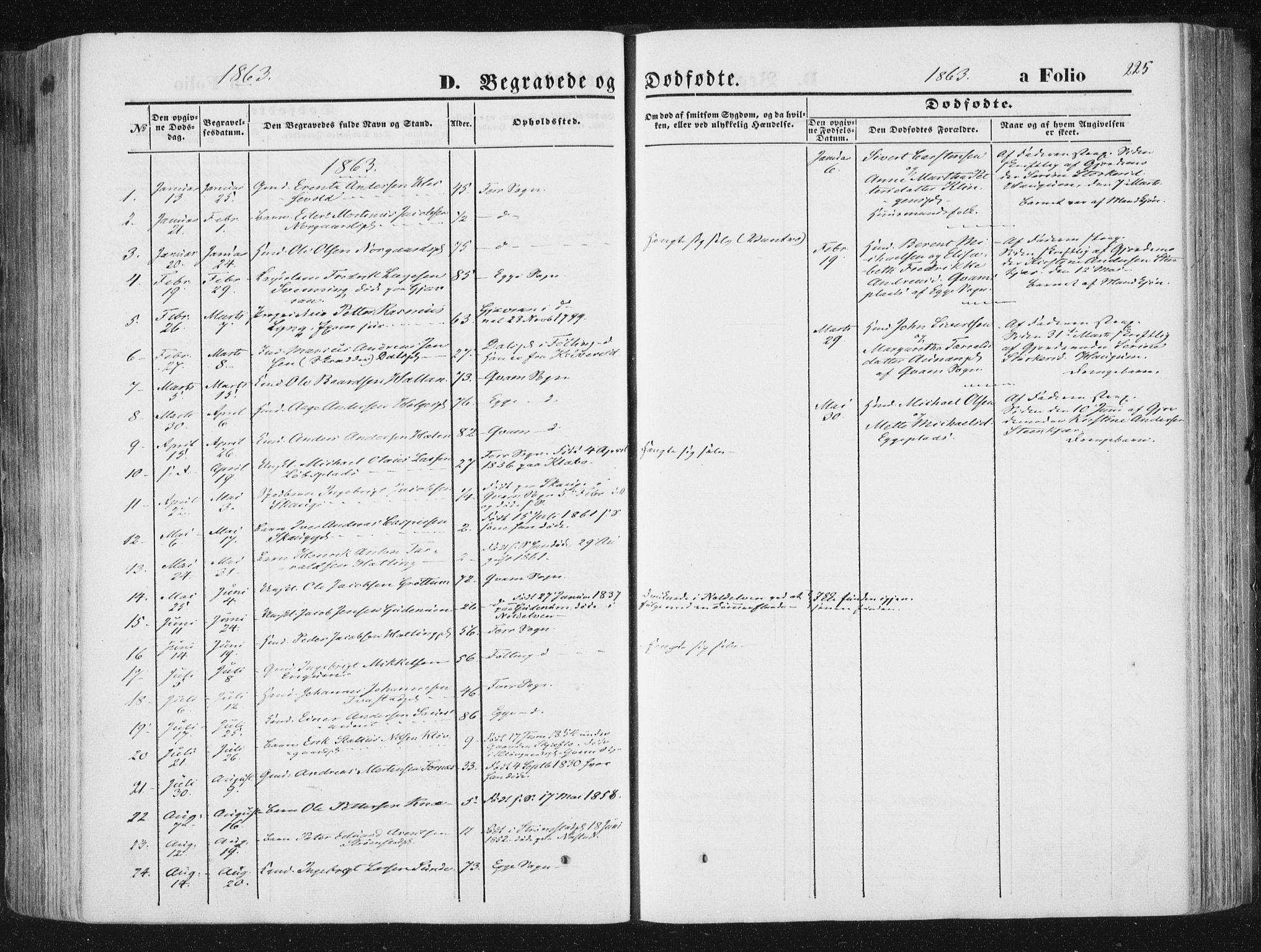 SAT, Ministerialprotokoller, klokkerbøker og fødselsregistre - Nord-Trøndelag, 746/L0447: Ministerialbok nr. 746A06, 1860-1877, s. 225