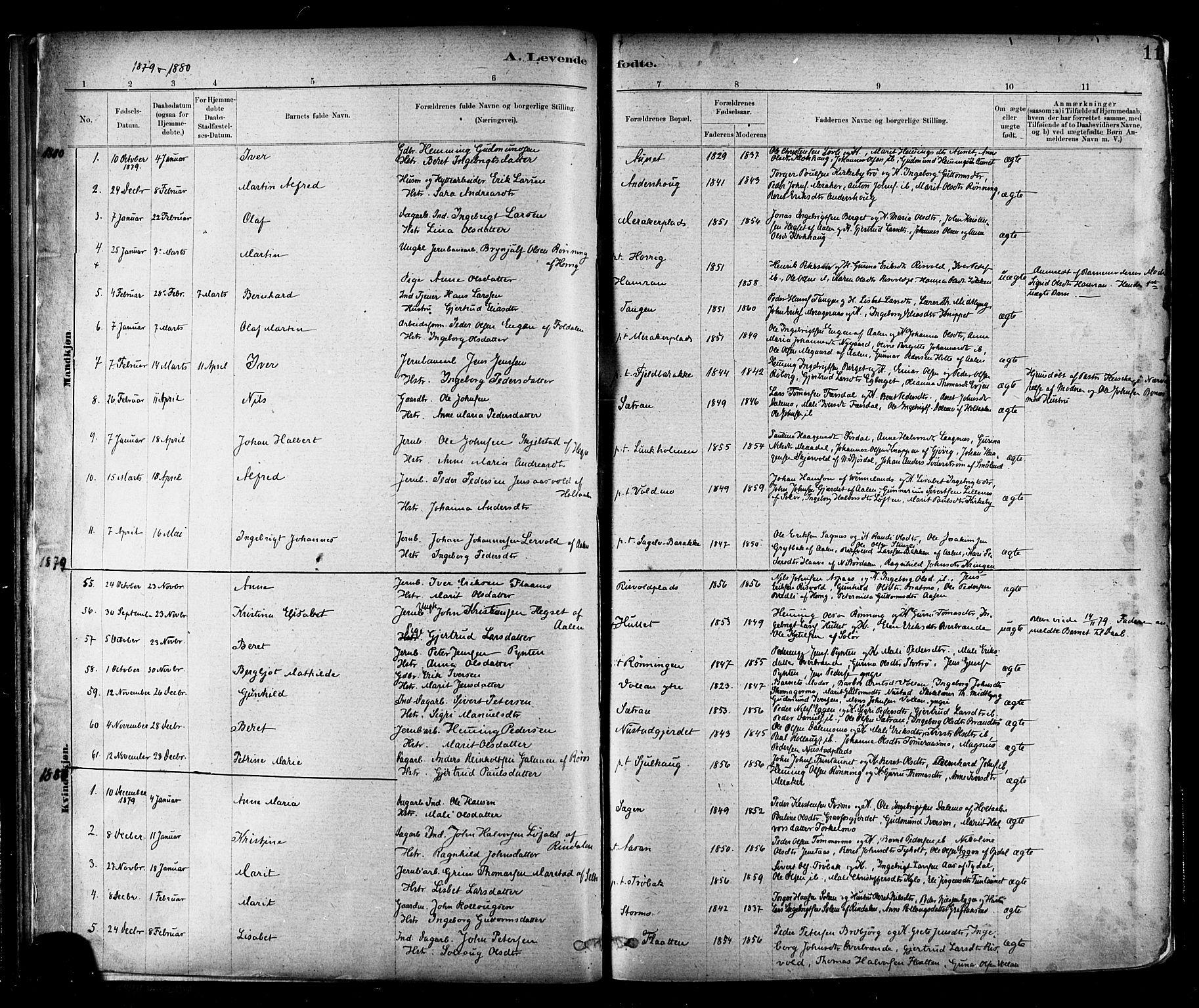 SAT, Ministerialprotokoller, klokkerbøker og fødselsregistre - Nord-Trøndelag, 706/L0047: Ministerialbok nr. 706A03, 1878-1892, s. 11