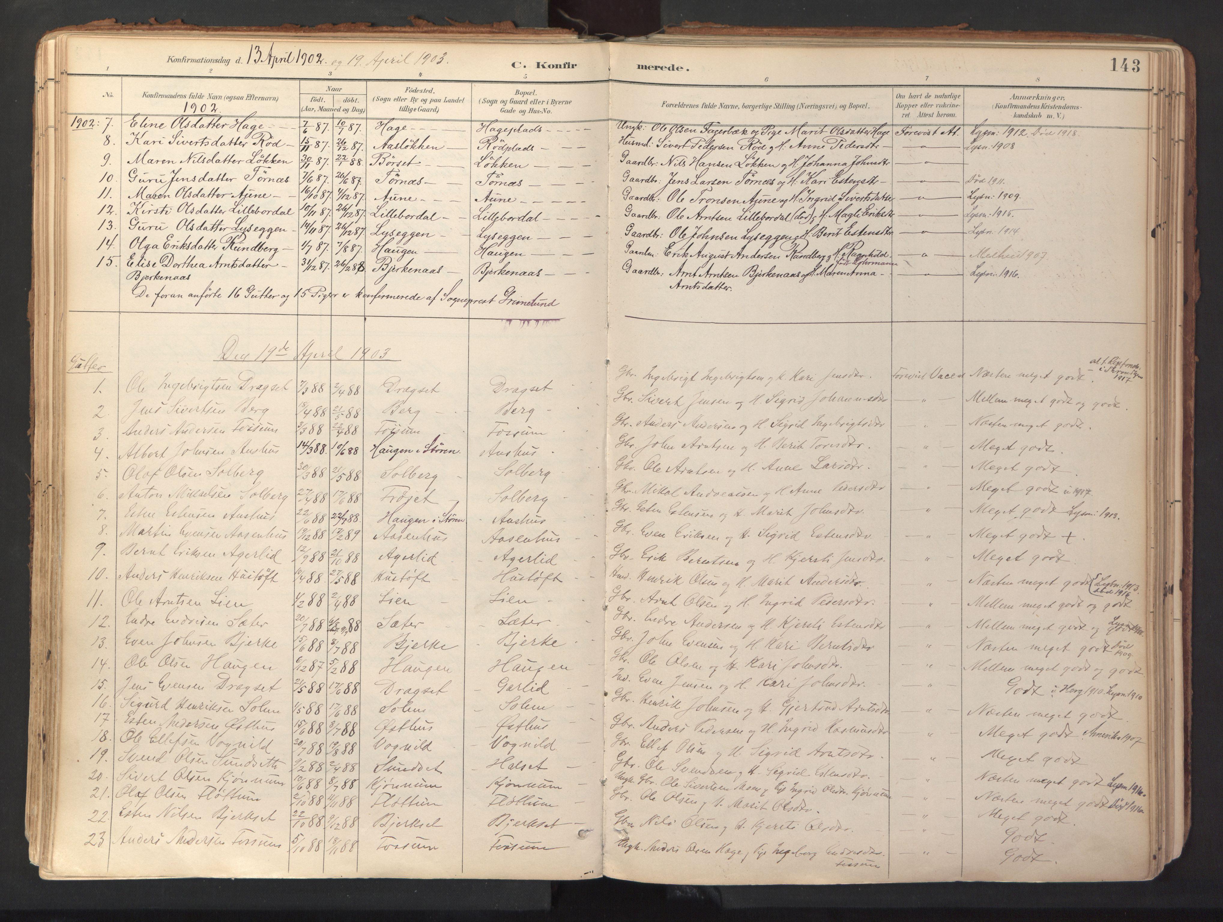 SAT, Ministerialprotokoller, klokkerbøker og fødselsregistre - Sør-Trøndelag, 689/L1041: Ministerialbok nr. 689A06, 1891-1923, s. 143