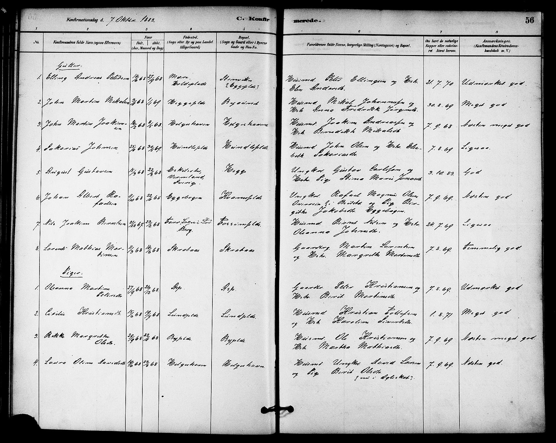 SAT, Ministerialprotokoller, klokkerbøker og fødselsregistre - Nord-Trøndelag, 740/L0378: Ministerialbok nr. 740A01, 1881-1895, s. 56