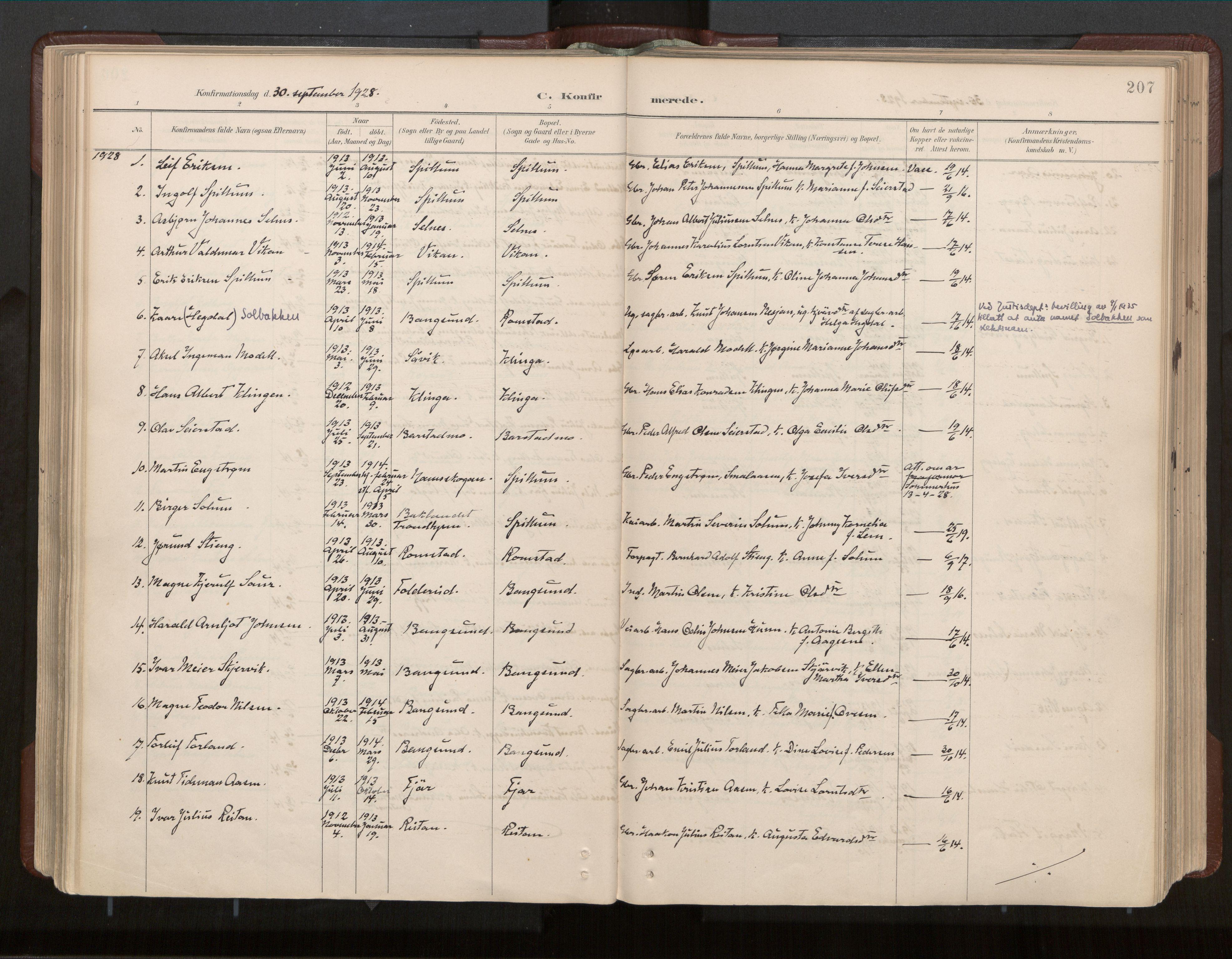 SAT, Ministerialprotokoller, klokkerbøker og fødselsregistre - Nord-Trøndelag, 770/L0589: Ministerialbok nr. 770A03, 1887-1929, s. 207