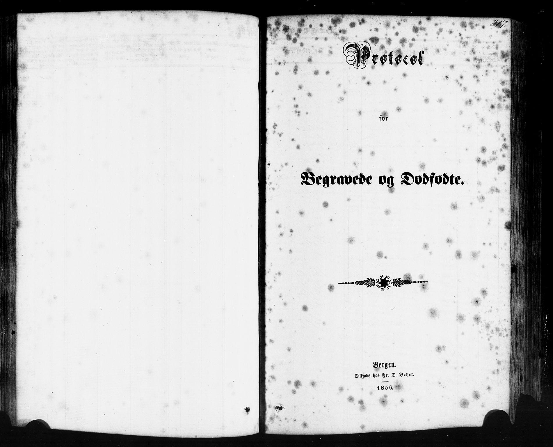 SAB, Hyllestad Sokneprestembete, Ministerialbok nr. A 1, 1861-1886, s. 317