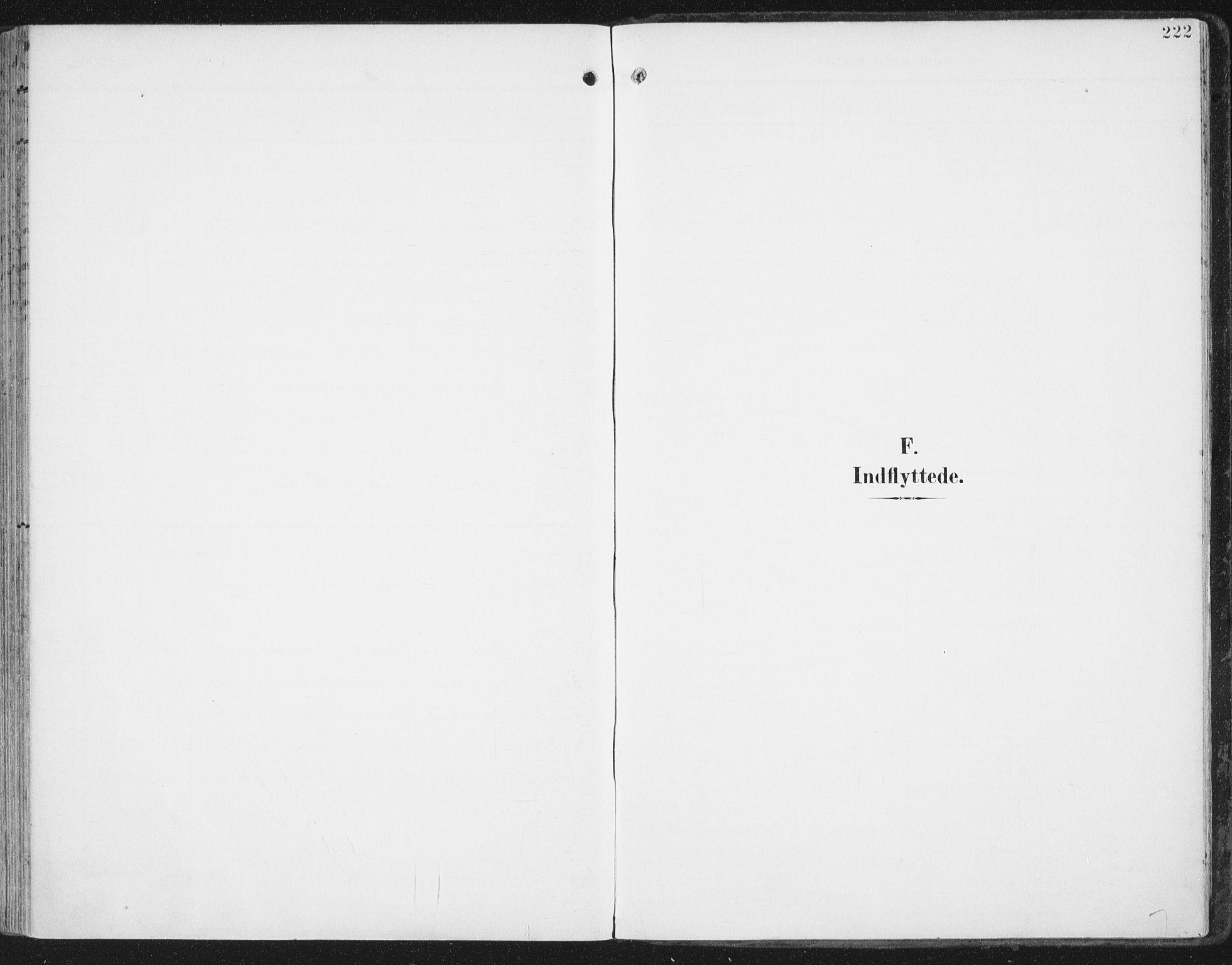 SAT, Ministerialprotokoller, klokkerbøker og fødselsregistre - Nord-Trøndelag, 786/L0688: Ministerialbok nr. 786A04, 1899-1912, s. 222