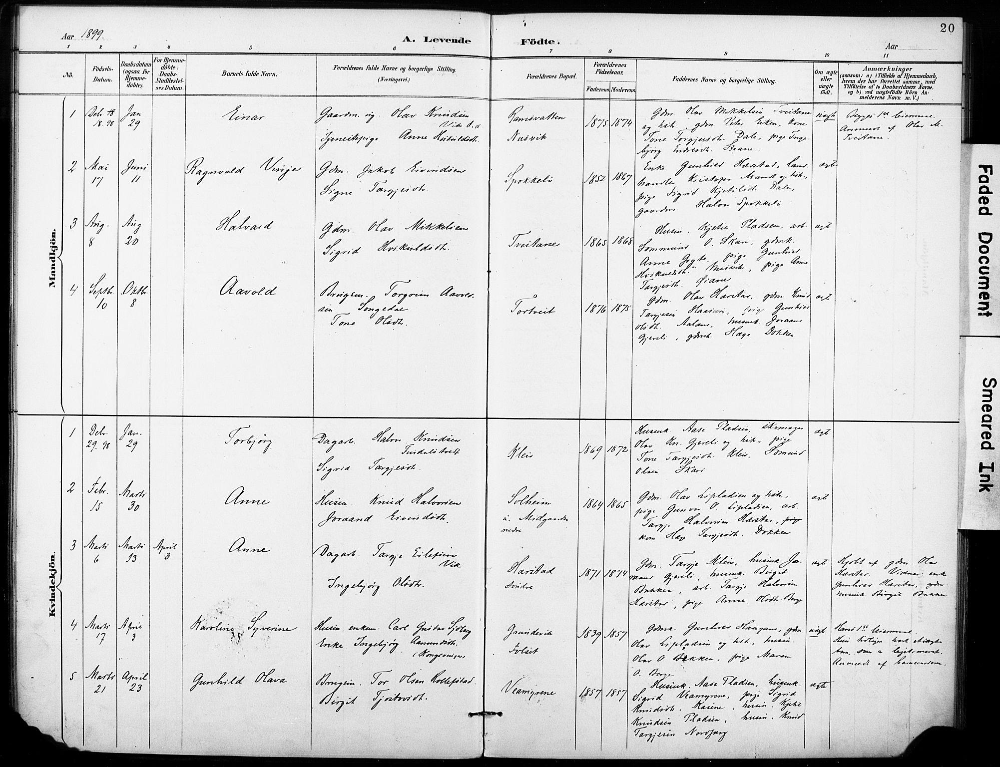 SAKO, Fyresdal kirkebøker, F/Fb/L0003: Ministerialbok nr. II 3, 1887-1903, s. 20