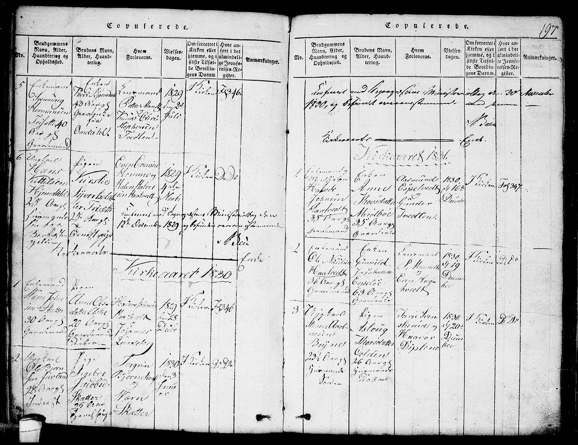 SAKO, Lårdal kirkebøker, G/Ga/L0001: Klokkerbok nr. I 1, 1815-1861, s. 197