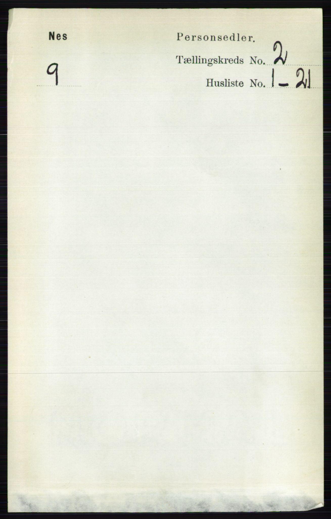 RA, Folketelling 1891 for 0411 Nes herred, 1891, s. 1071
