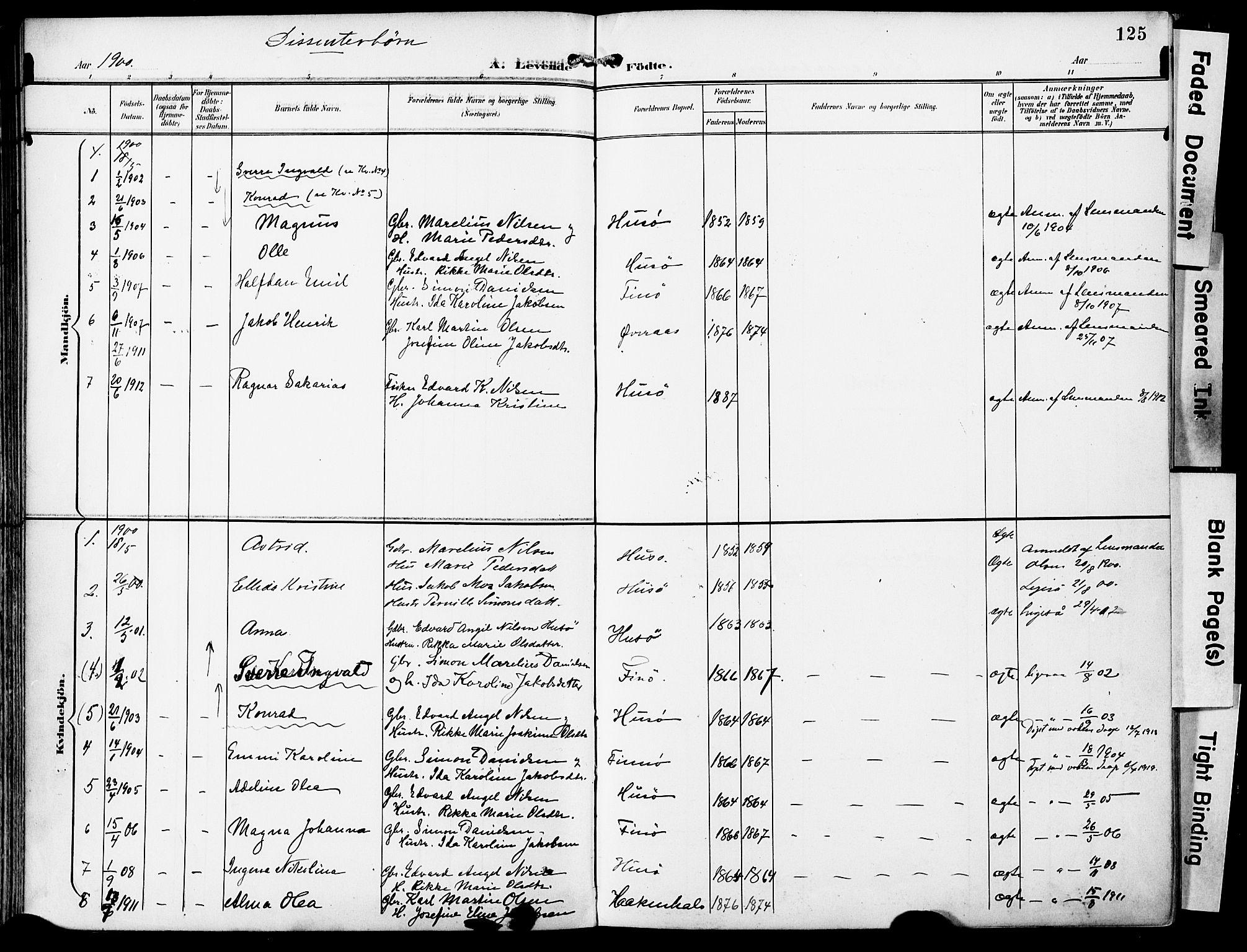 SAT, Ministerialprotokoller, klokkerbøker og fødselsregistre - Nordland, 859/L0848: Ministerialbok nr. 859A08, 1900-1912, s. 125