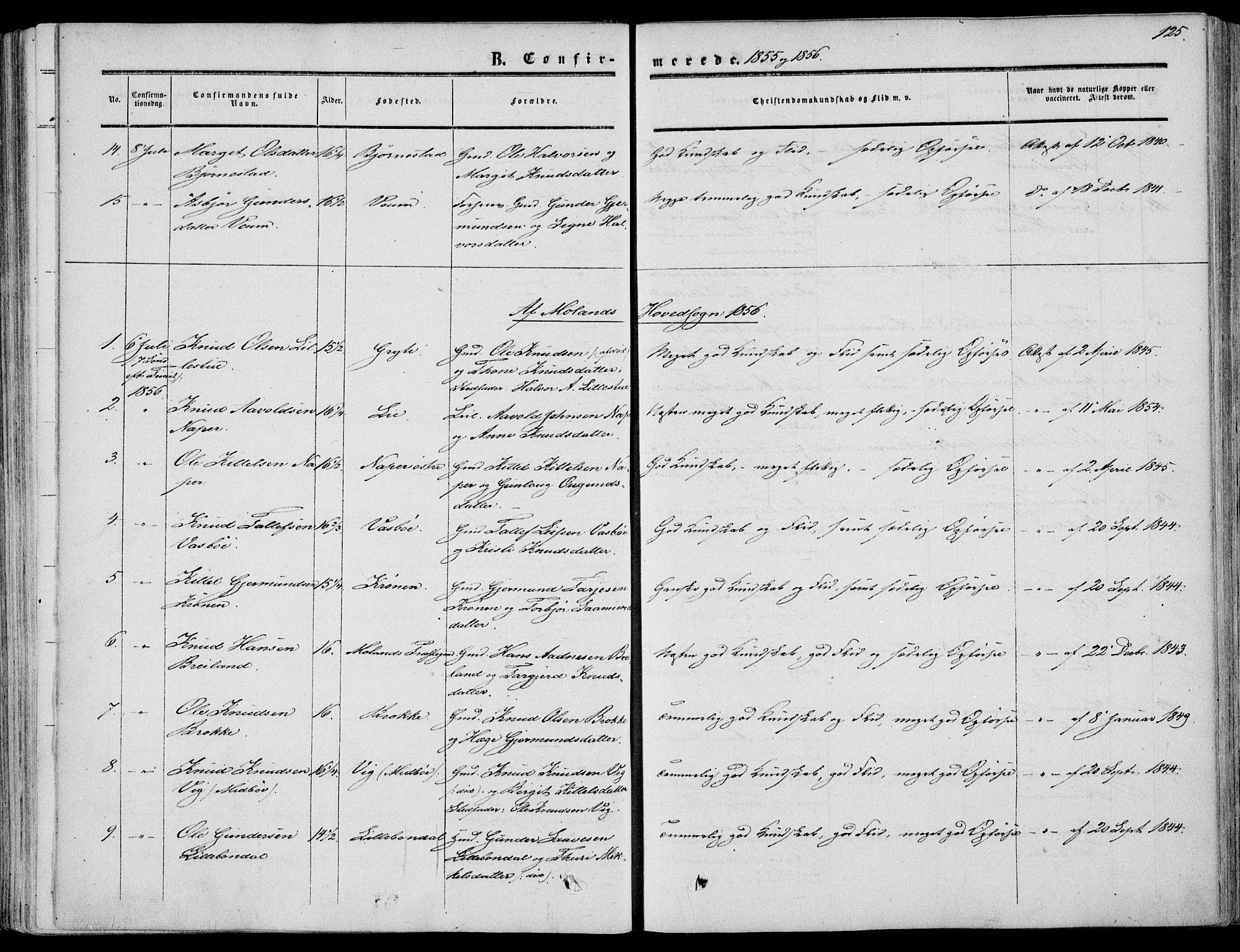 SAKO, Fyresdal kirkebøker, F/Fa/L0005: Ministerialbok nr. I 5, 1855-1871, s. 125