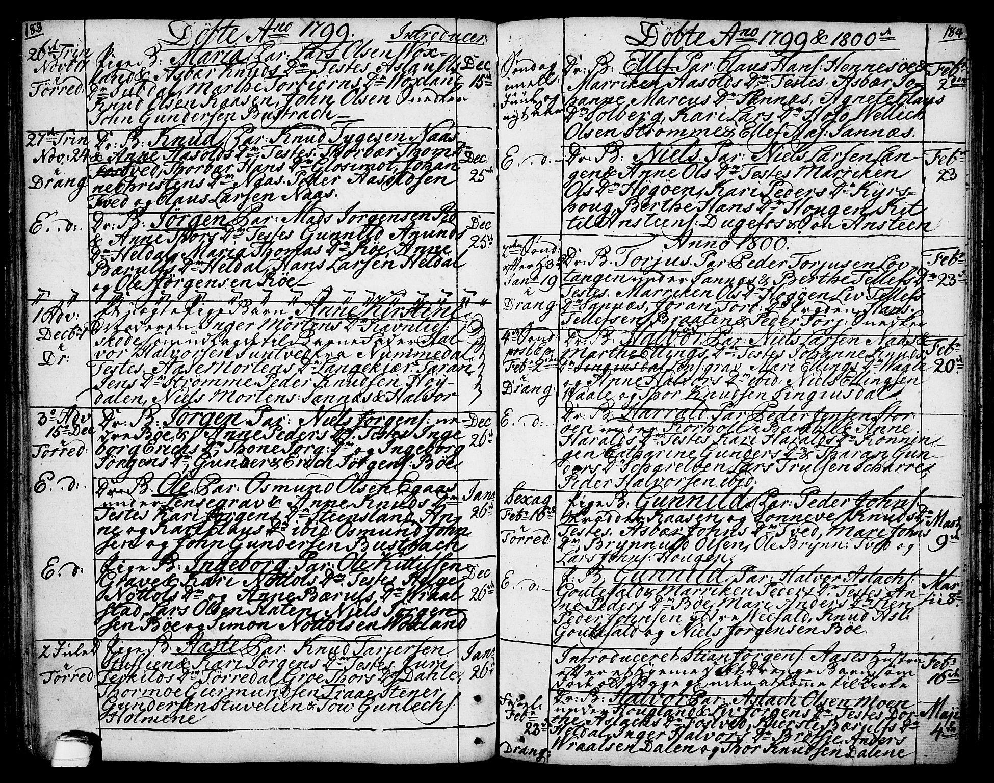 SAKO, Drangedal kirkebøker, F/Fa/L0003: Ministerialbok nr. 3, 1768-1814, s. 183-184
