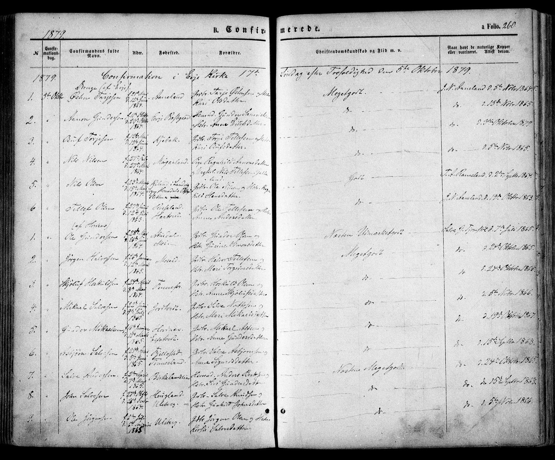 SAK, Evje sokneprestkontor, F/Fa/Faa/L0006: Ministerialbok nr. A 6, 1866-1884, s. 260