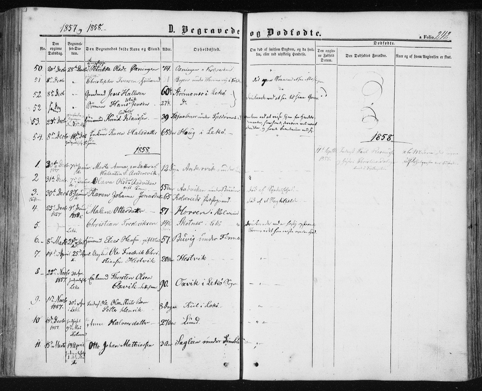 SAT, Ministerialprotokoller, klokkerbøker og fødselsregistre - Nord-Trøndelag, 780/L0641: Ministerialbok nr. 780A06, 1857-1874, s. 242