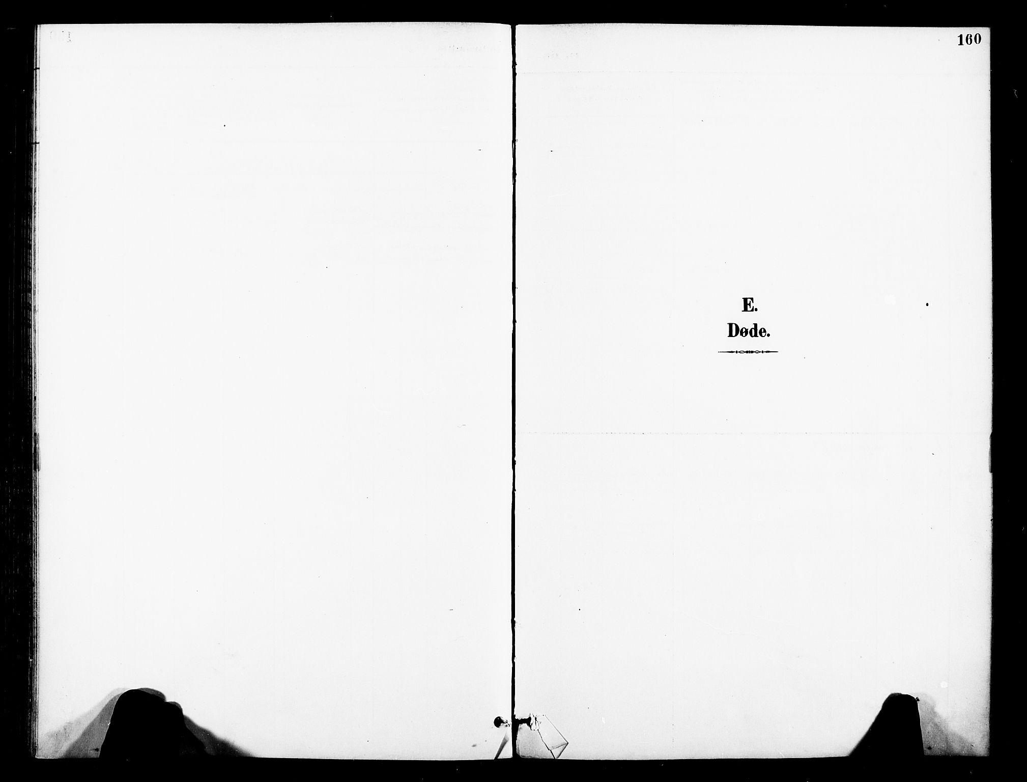 SAT, Ministerialprotokoller, klokkerbøker og fødselsregistre - Nord-Trøndelag, 739/L0372: Ministerialbok nr. 739A04, 1895-1903, s. 160