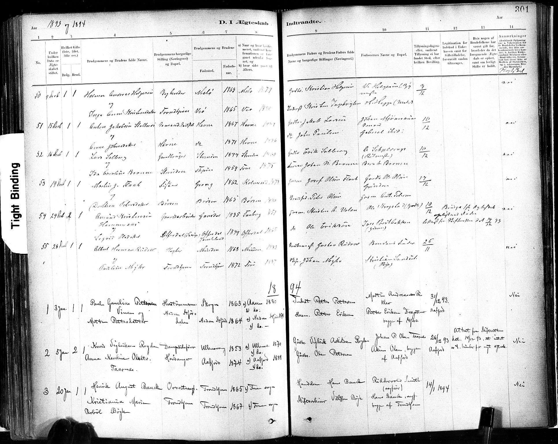 SAT, Ministerialprotokoller, klokkerbøker og fødselsregistre - Sør-Trøndelag, 602/L0119: Ministerialbok nr. 602A17, 1880-1901, s. 301