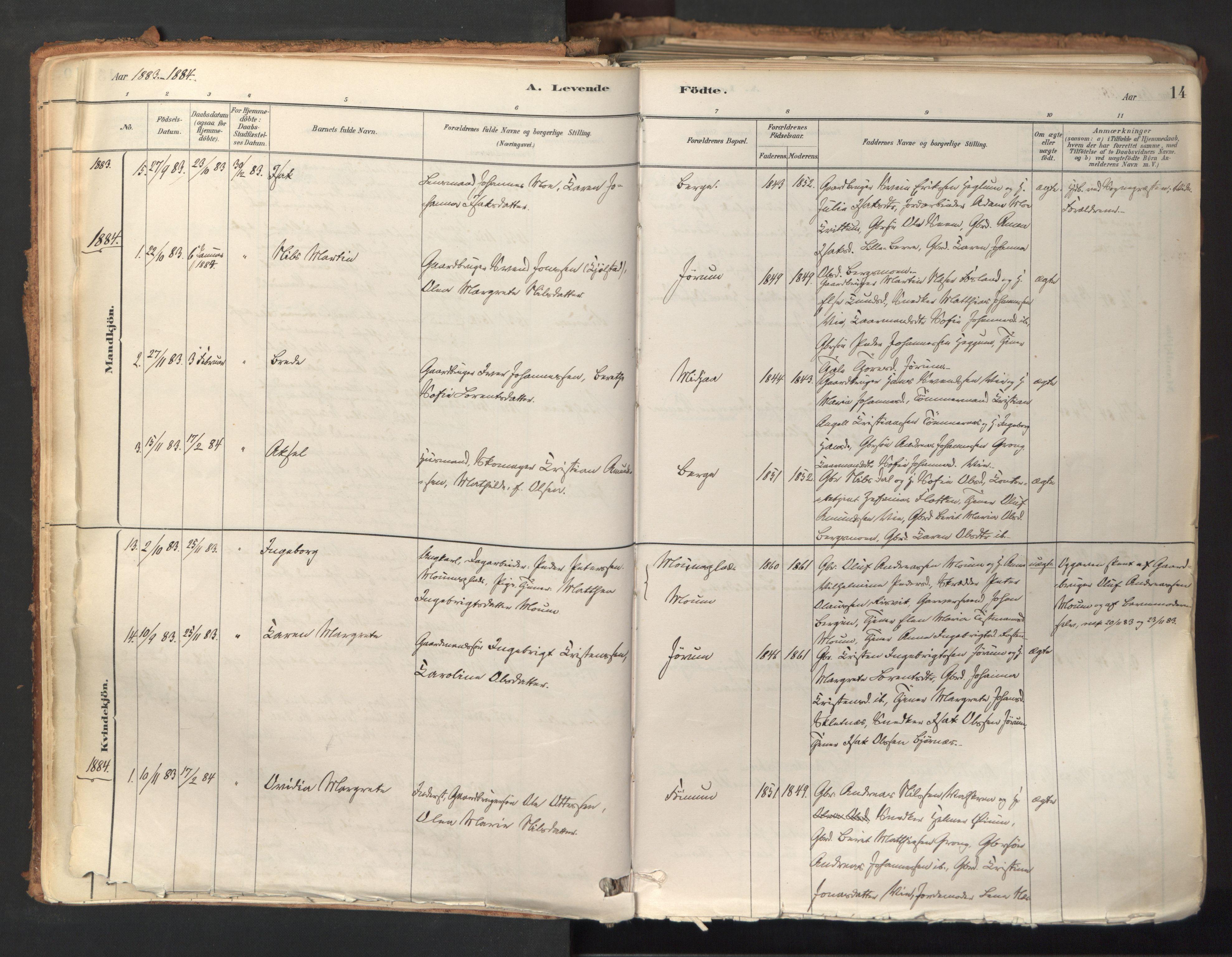 SAT, Ministerialprotokoller, klokkerbøker og fødselsregistre - Nord-Trøndelag, 758/L0519: Ministerialbok nr. 758A04, 1880-1926, s. 14