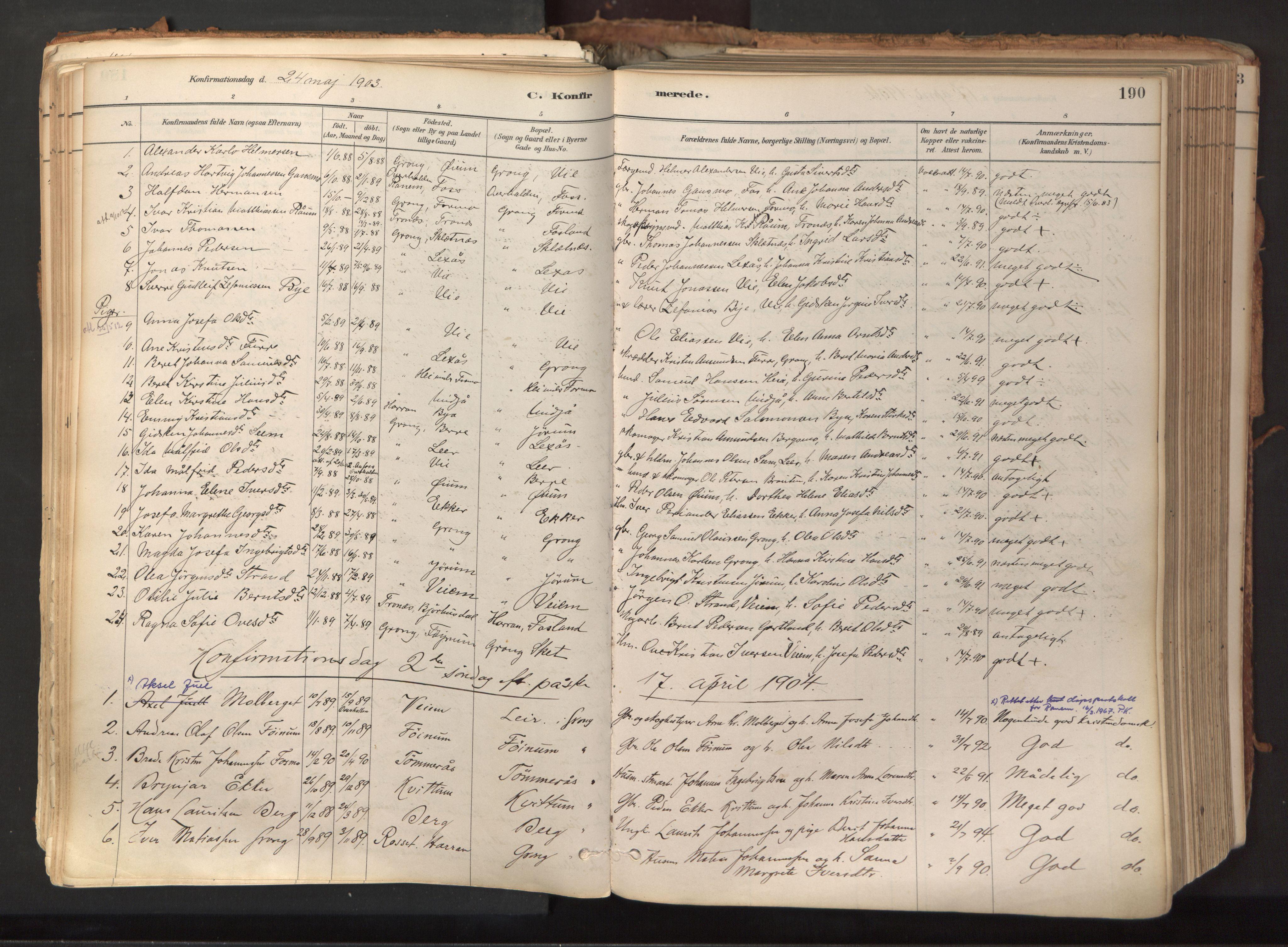 SAT, Ministerialprotokoller, klokkerbøker og fødselsregistre - Nord-Trøndelag, 758/L0519: Ministerialbok nr. 758A04, 1880-1926, s. 190
