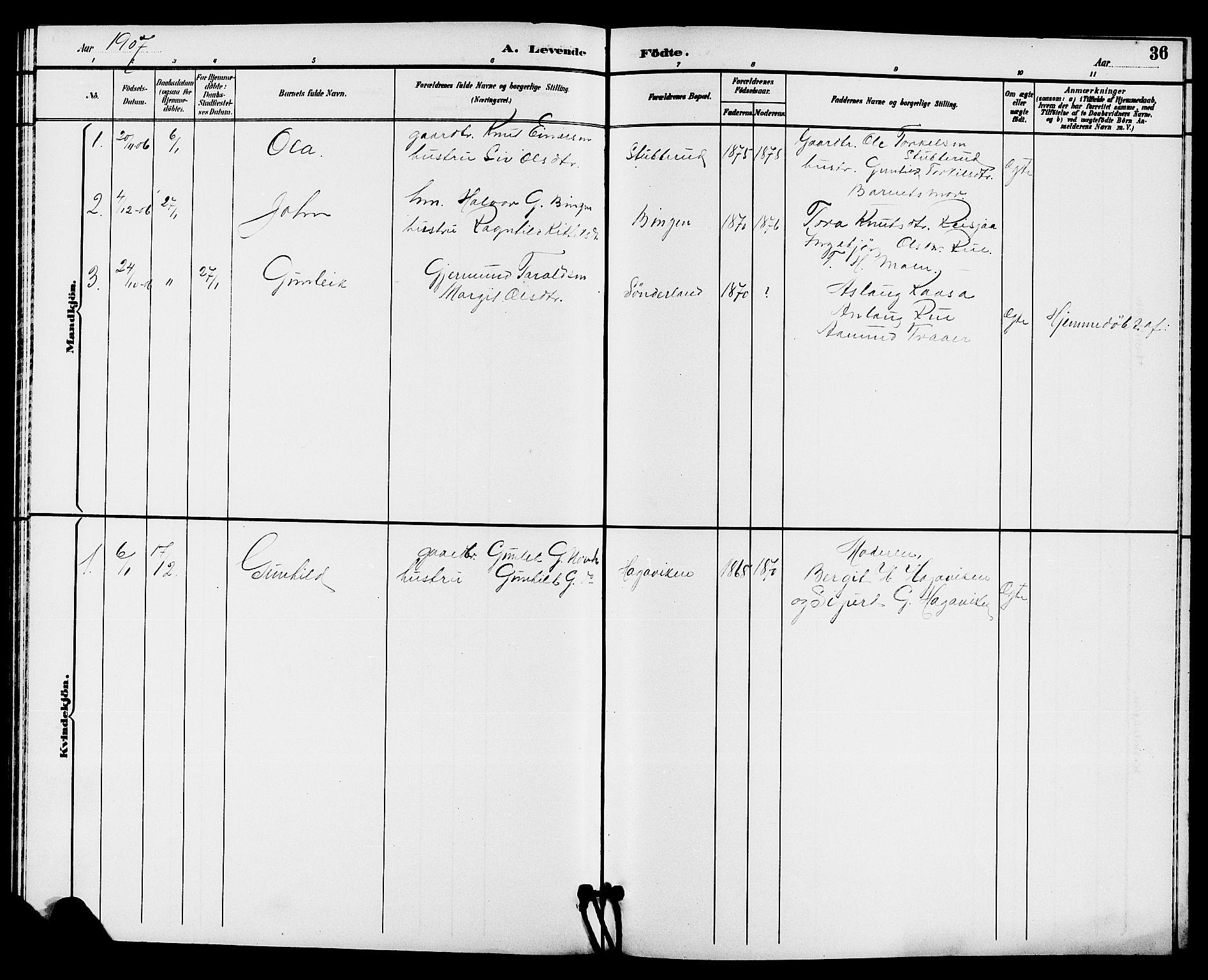 SAKO, Hjartdal kirkebøker, G/Gc/L0003: Klokkerbok nr. III 3, 1890-1907, s. 36