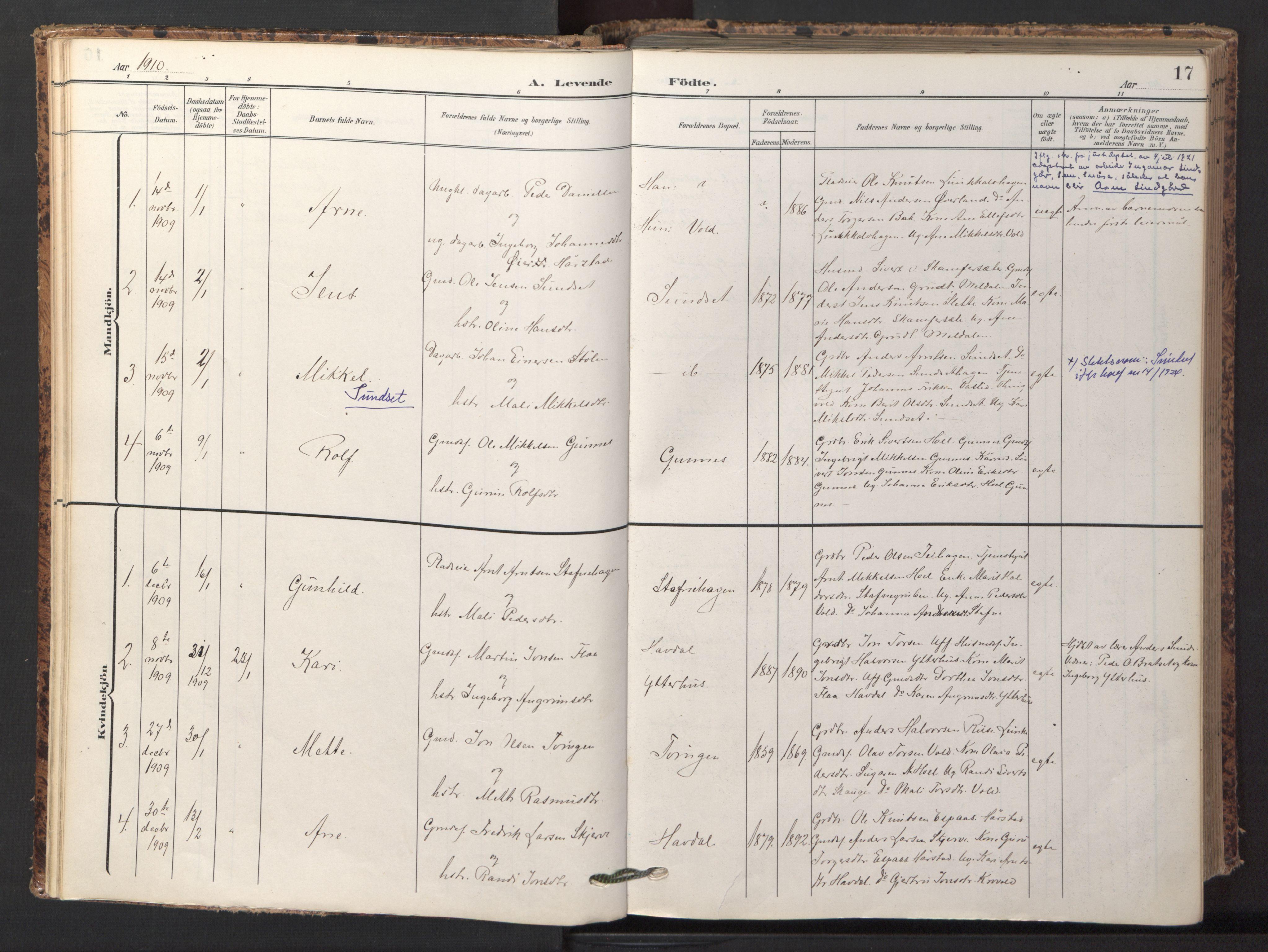 SAT, Ministerialprotokoller, klokkerbøker og fødselsregistre - Sør-Trøndelag, 674/L0873: Ministerialbok nr. 674A05, 1908-1923, s. 17
