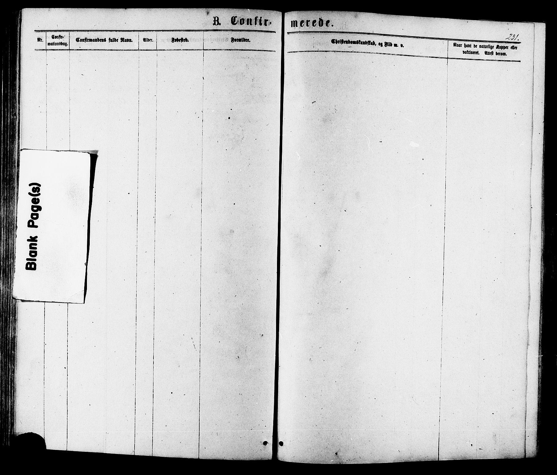 SAT, Ministerialprotokoller, klokkerbøker og fødselsregistre - Sør-Trøndelag, 630/L0495: Ministerialbok nr. 630A08, 1868-1878, s. 231