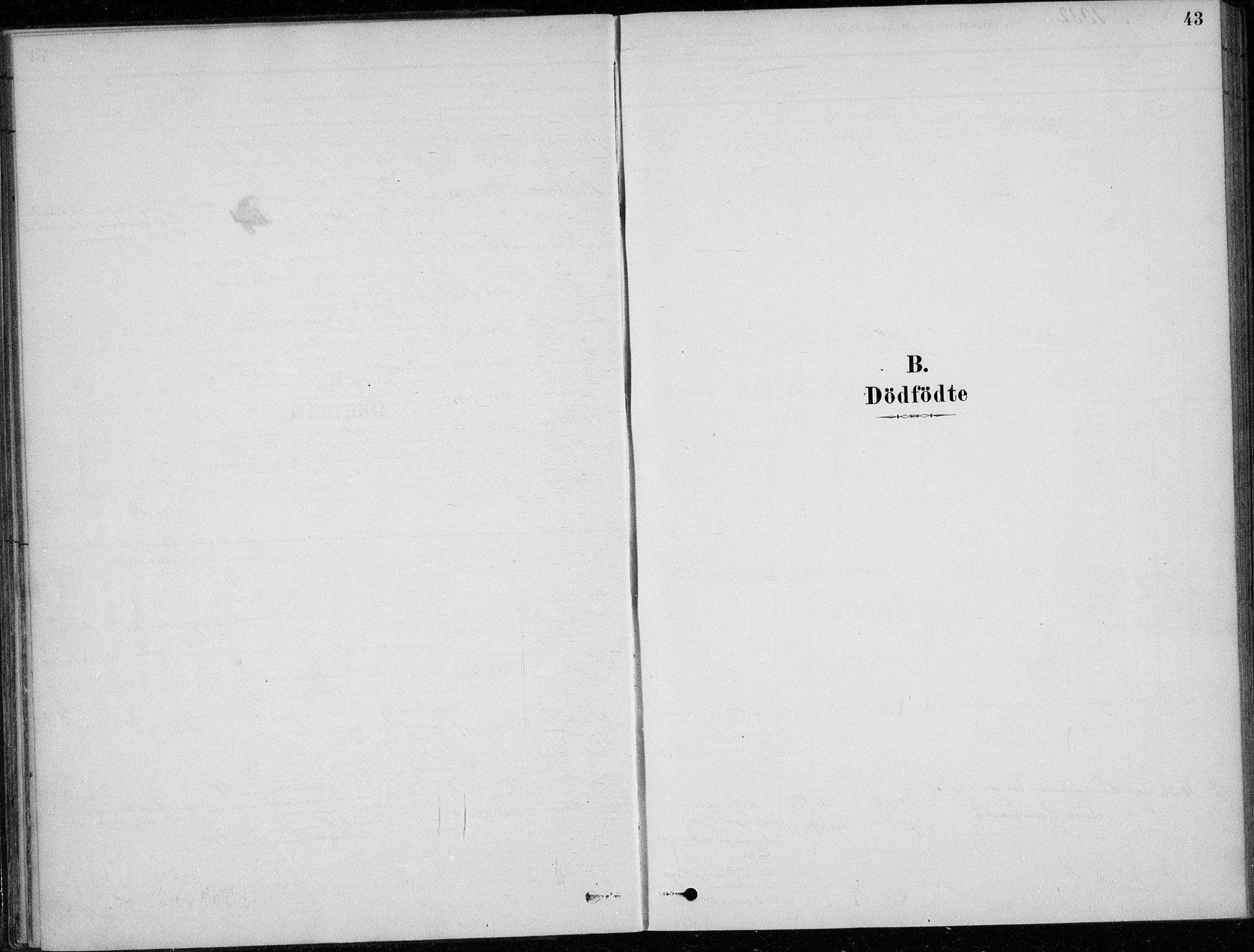SAKO, Sigdal kirkebøker, F/Fc/L0001: Ministerialbok nr. III 1, 1879-1893, s. 43