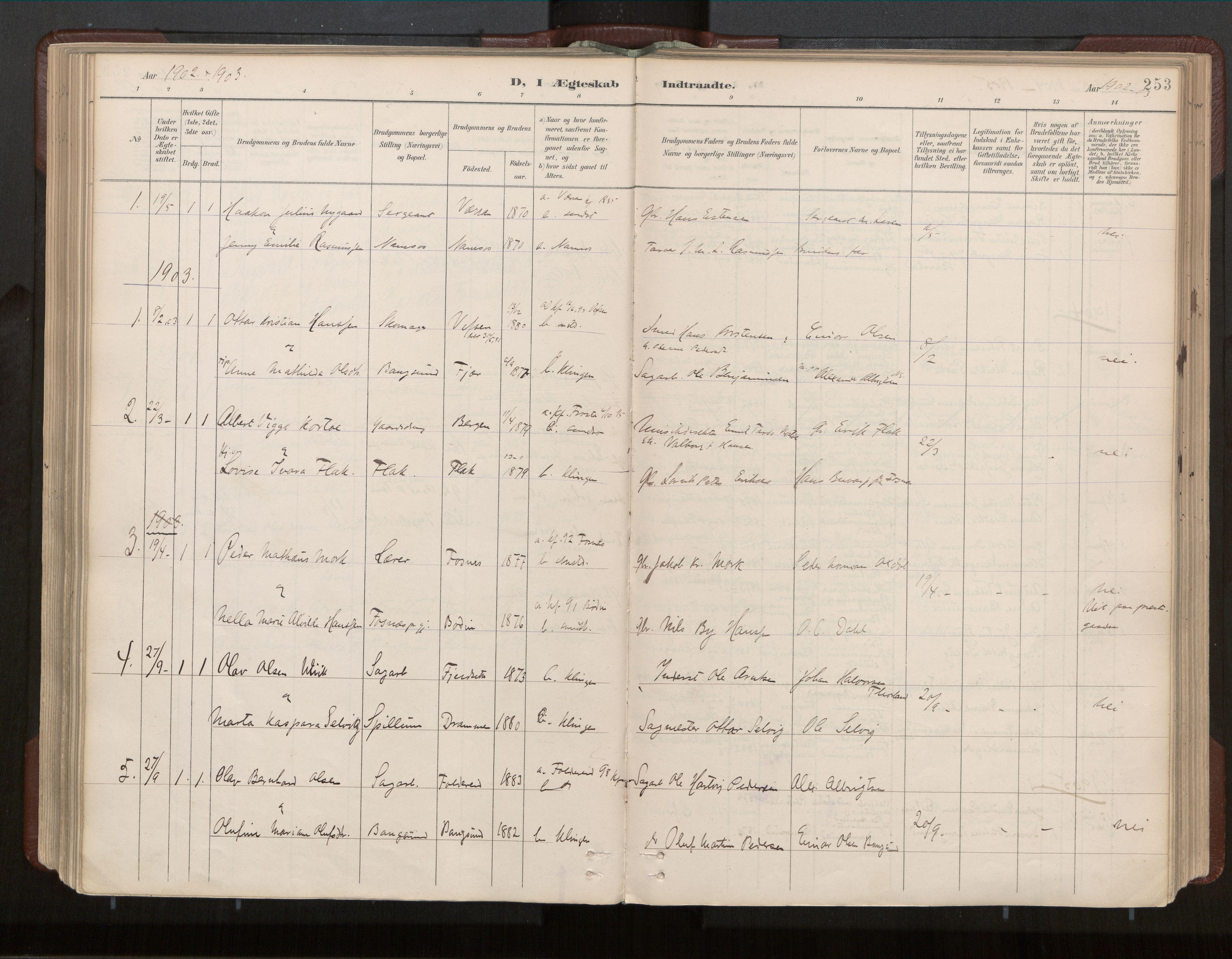 SAT, Ministerialprotokoller, klokkerbøker og fødselsregistre - Nord-Trøndelag, 770/L0589: Ministerialbok nr. 770A03, 1887-1929, s. 253