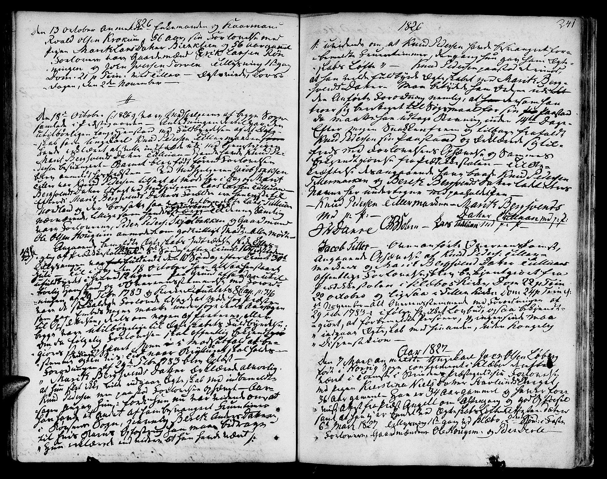 SAT, Ministerialprotokoller, klokkerbøker og fødselsregistre - Sør-Trøndelag, 618/L0438: Ministerialbok nr. 618A03, 1783-1815, s. 241