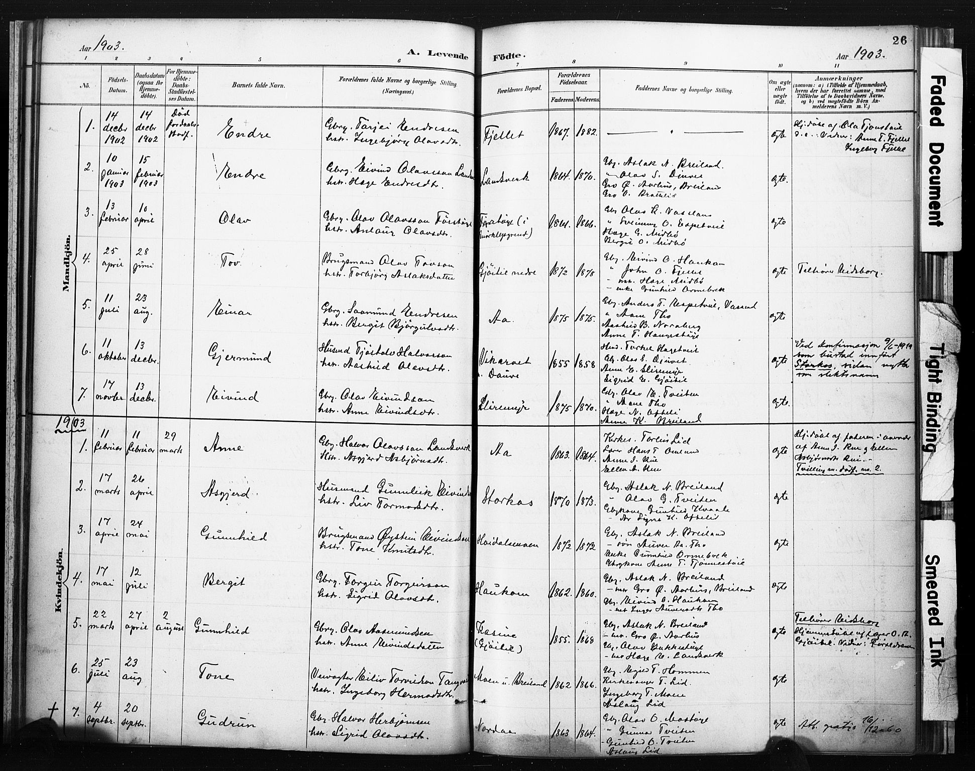SAKO, Lårdal kirkebøker, F/Fc/L0002: Ministerialbok nr. III 2, 1887-1906, s. 26