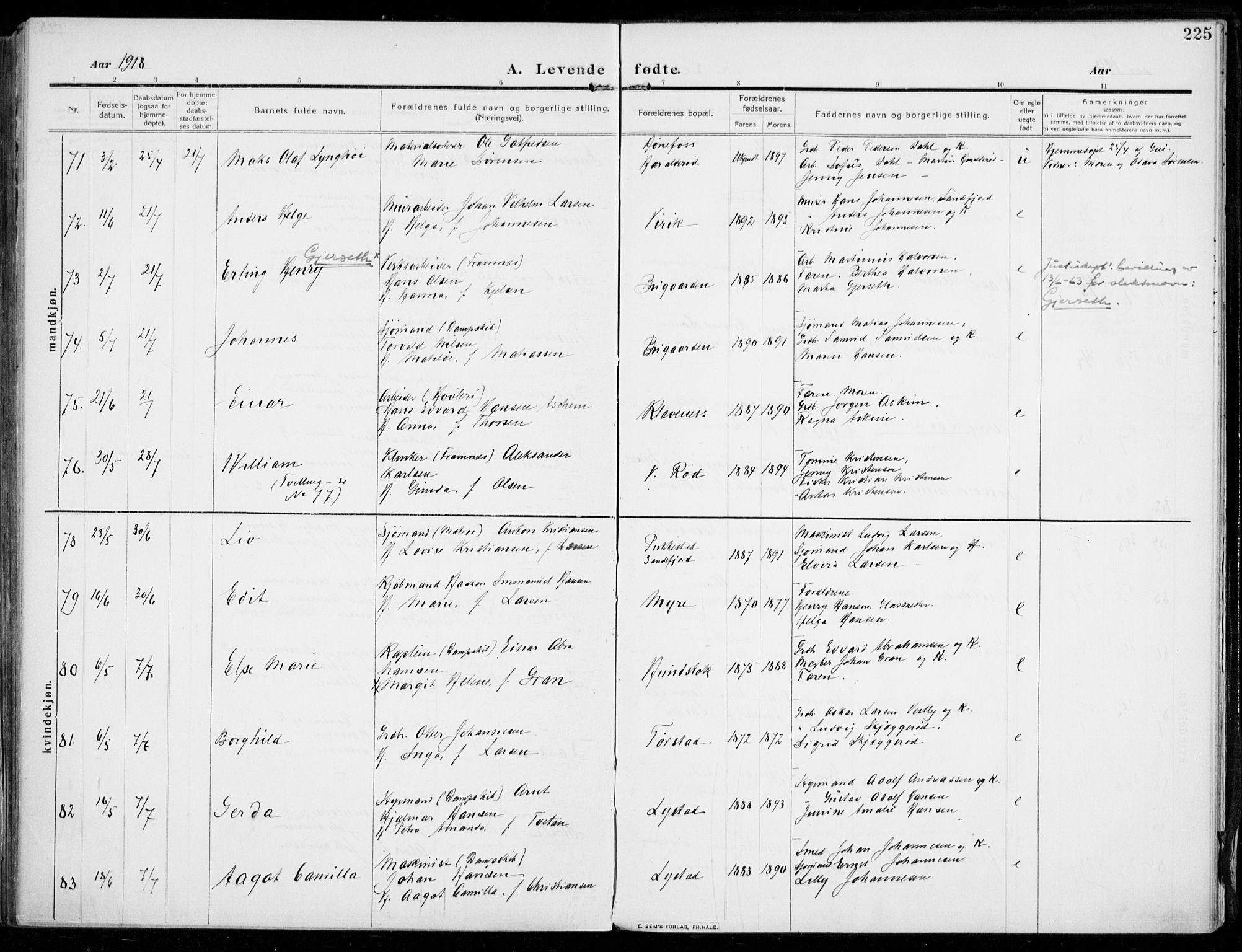 SAKO, Sandar kirkebøker, F/Fa/L0016: Ministerialbok nr. 16, 1909-1919, s. 225
