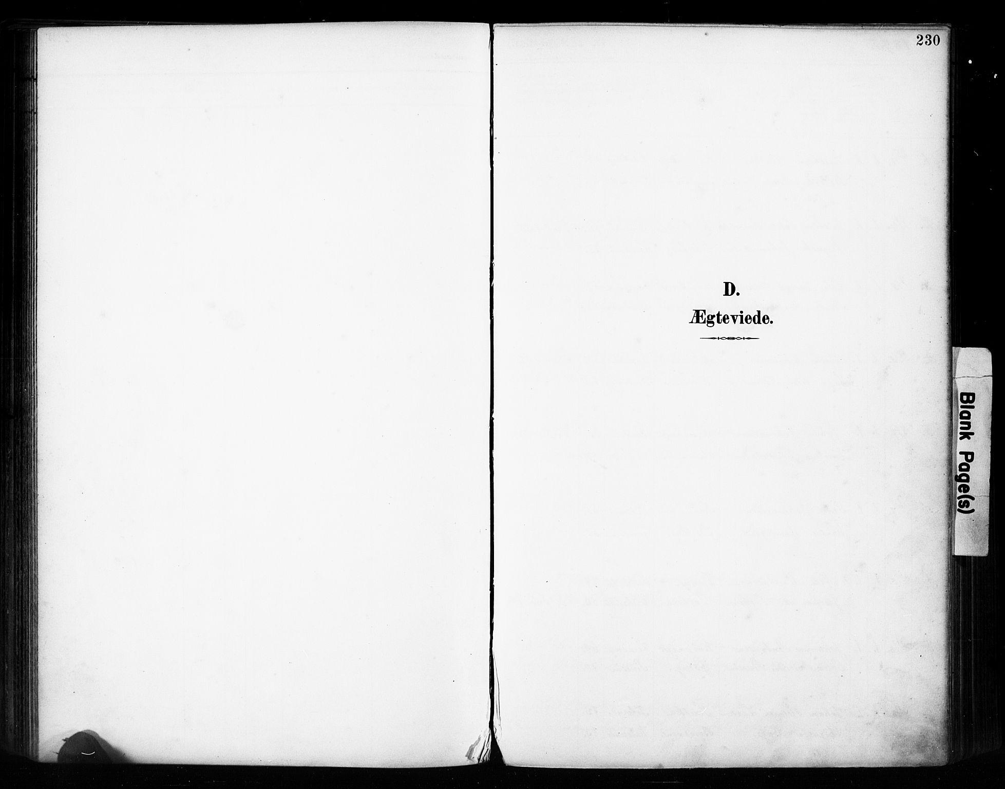 SAH, Vestre Toten prestekontor, H/Ha/Haa/L0011: Ministerialbok nr. 11, 1895-1906, s. 230