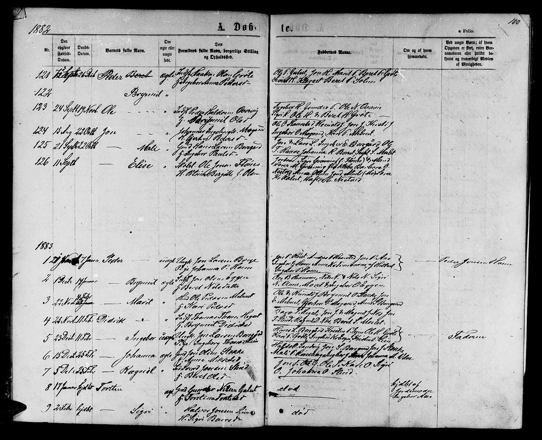 SAT, Ministerialprotokoller, klokkerbøker og fødselsregistre - Sør-Trøndelag, 695/L1156: Klokkerbok nr. 695C07, 1869-1888, s. 100