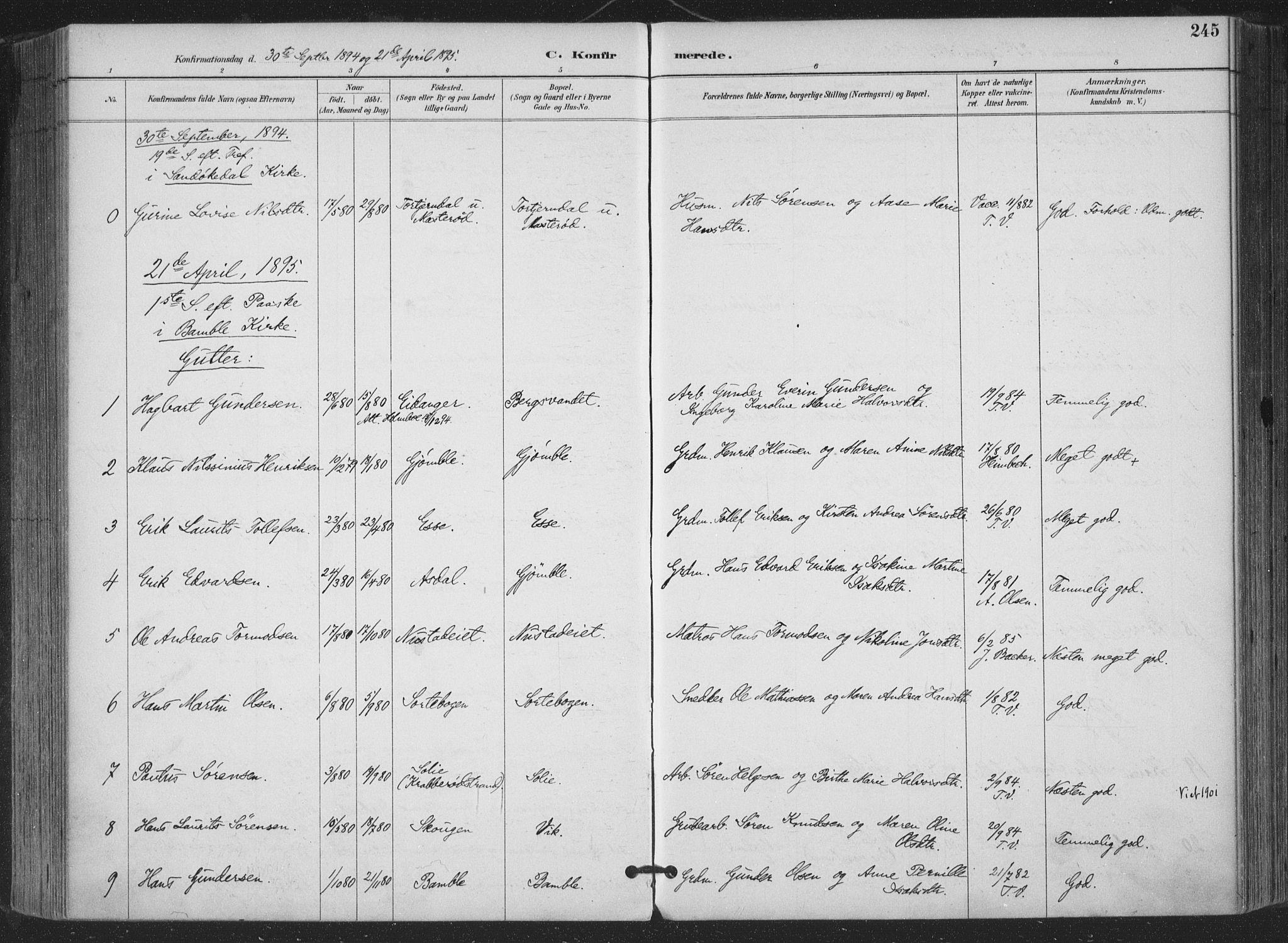SAKO, Bamble kirkebøker, F/Fa/L0008: Ministerialbok nr. I 8, 1888-1900, s. 245