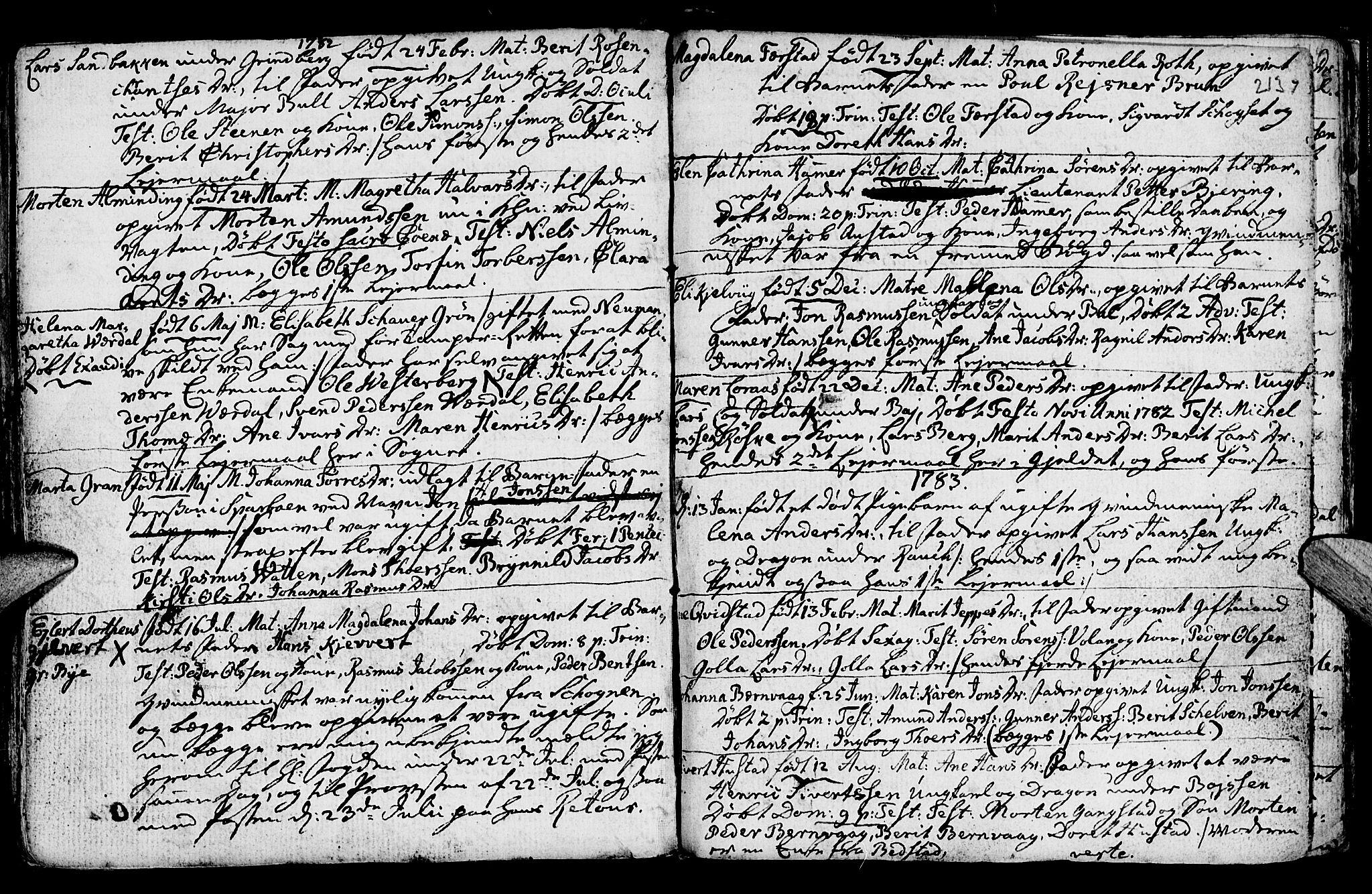 SAT, Ministerialprotokoller, klokkerbøker og fødselsregistre - Nord-Trøndelag, 730/L0273: Ministerialbok nr. 730A02, 1762-1802, s. 213