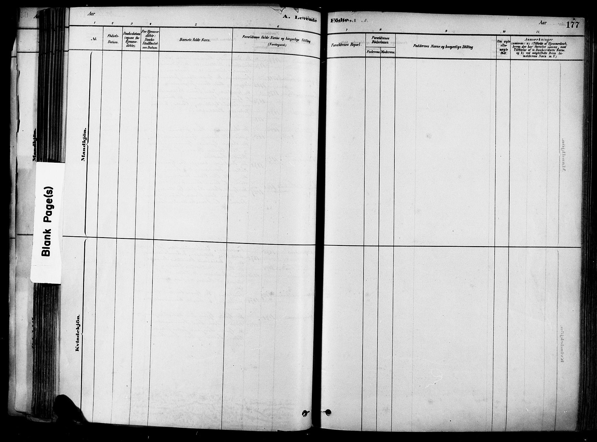 SAKO, Heddal kirkebøker, F/Fa/L0008: Ministerialbok nr. I 8, 1878-1903, s. 177