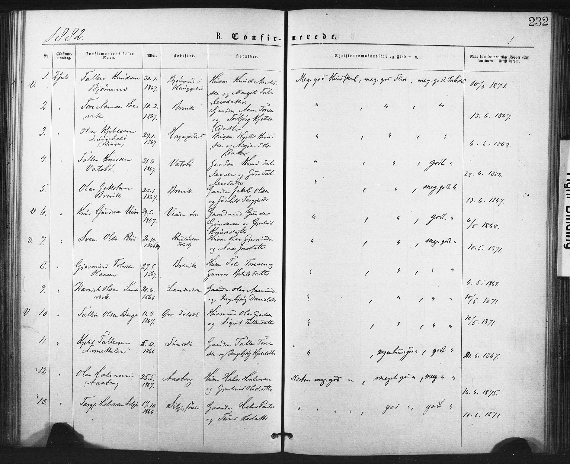 SAKO, Fyresdal kirkebøker, F/Fa/L0006: Ministerialbok nr. I 6, 1872-1886, s. 232