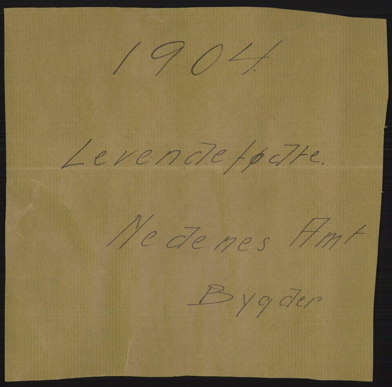 RA, Statistisk sentralbyrå, Sosiodemografiske emner, Befolkning, D/Df/Dfa/Dfab/L0010: Nedenes amt: Fødte, gifte, døde, 1904