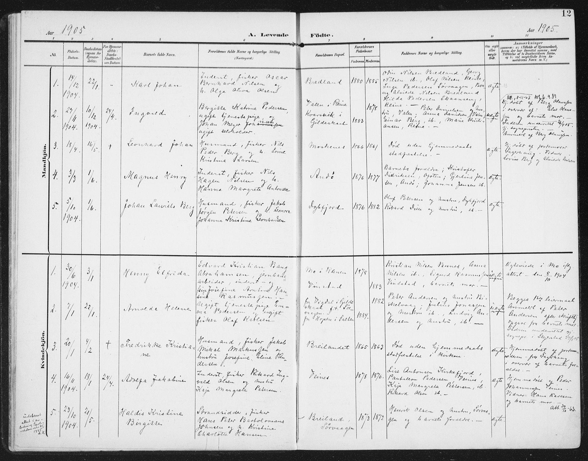 SAT, Ministerialprotokoller, klokkerbøker og fødselsregistre - Nordland, 886/L1221: Ministerialbok nr. 886A03, 1903-1913, s. 12
