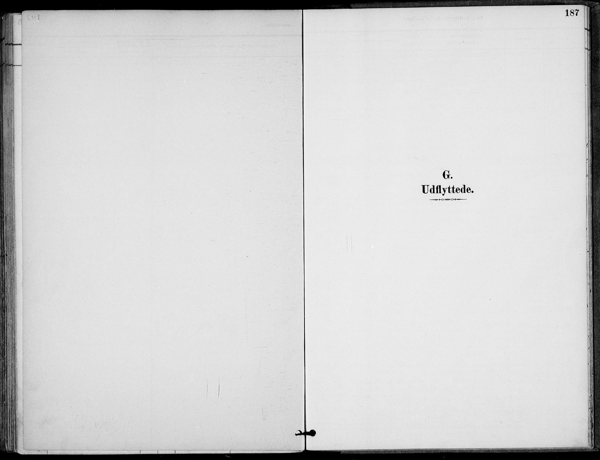 SAT, Ministerialprotokoller, klokkerbøker og fødselsregistre - Nordland, 825/L0362: Ministerialbok nr. 825A16, 1886-1908, s. 187