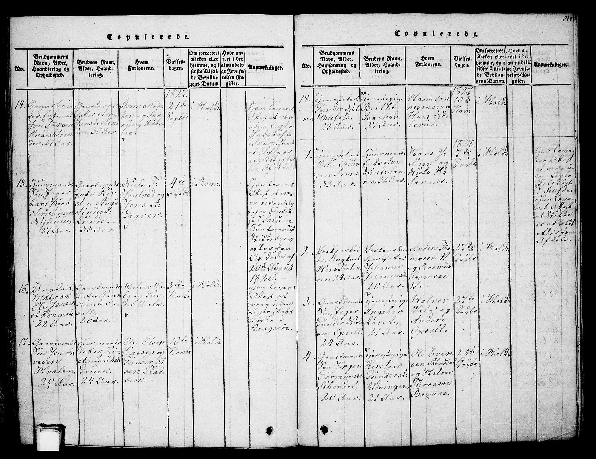 SAKO, Holla kirkebøker, G/Ga/L0001: Klokkerbok nr. I 1, 1814-1830, s. 214