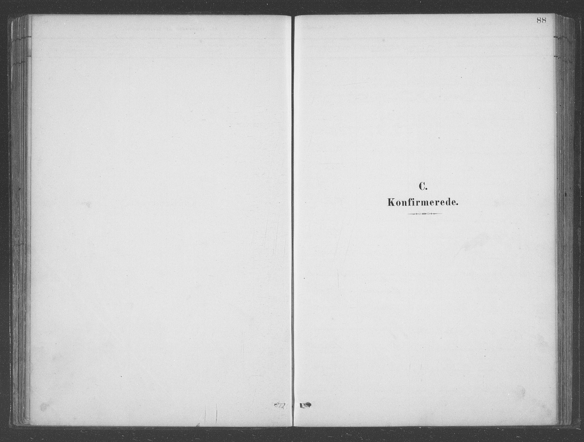 SAB, Aurland Sokneprestembete*, Ministerialbok nr. B  1, 1880-1909, s. 88