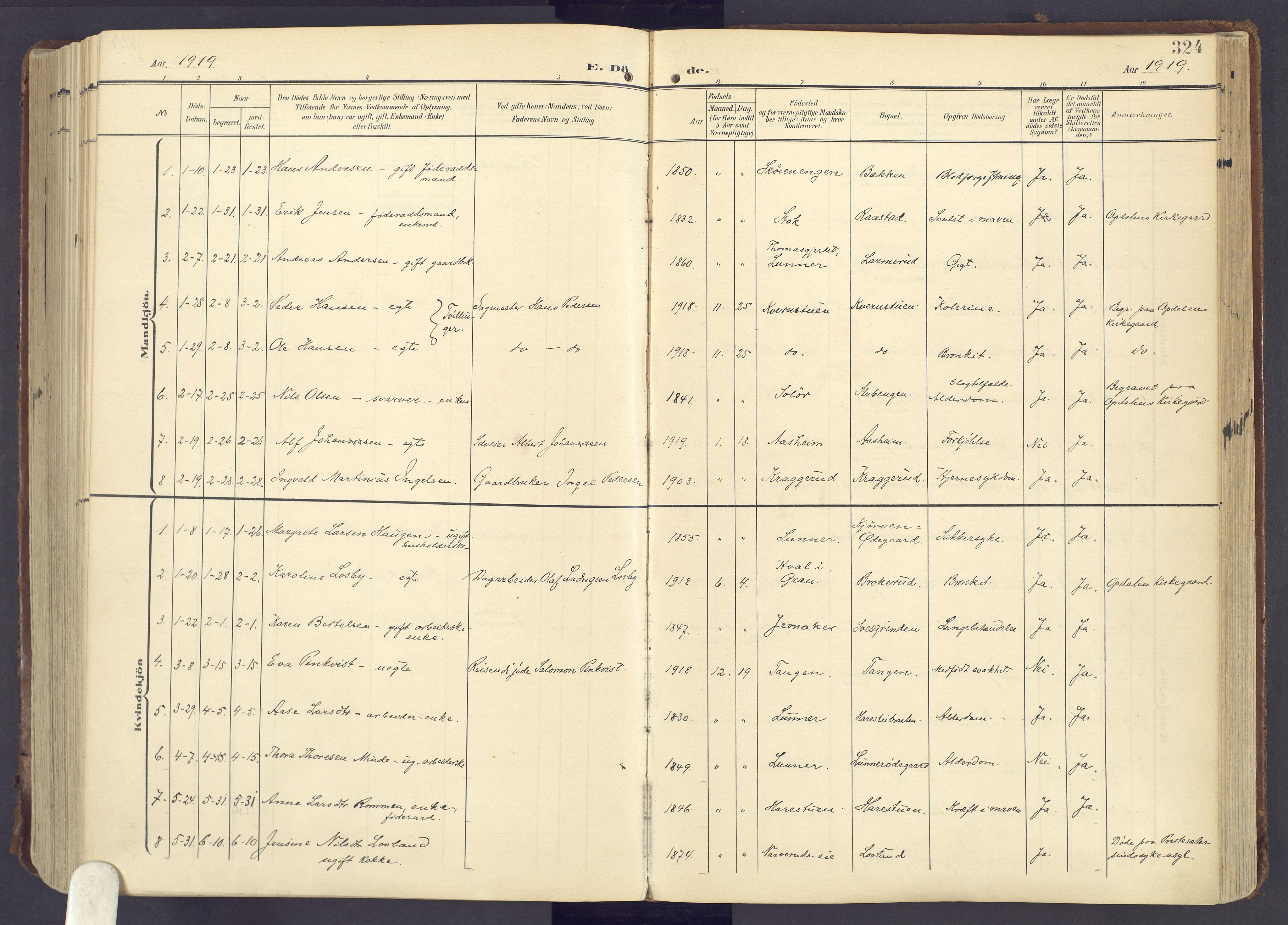 SAH, Lunner prestekontor, H/Ha/Haa/L0001: Ministerialbok nr. 1, 1907-1922, s. 324