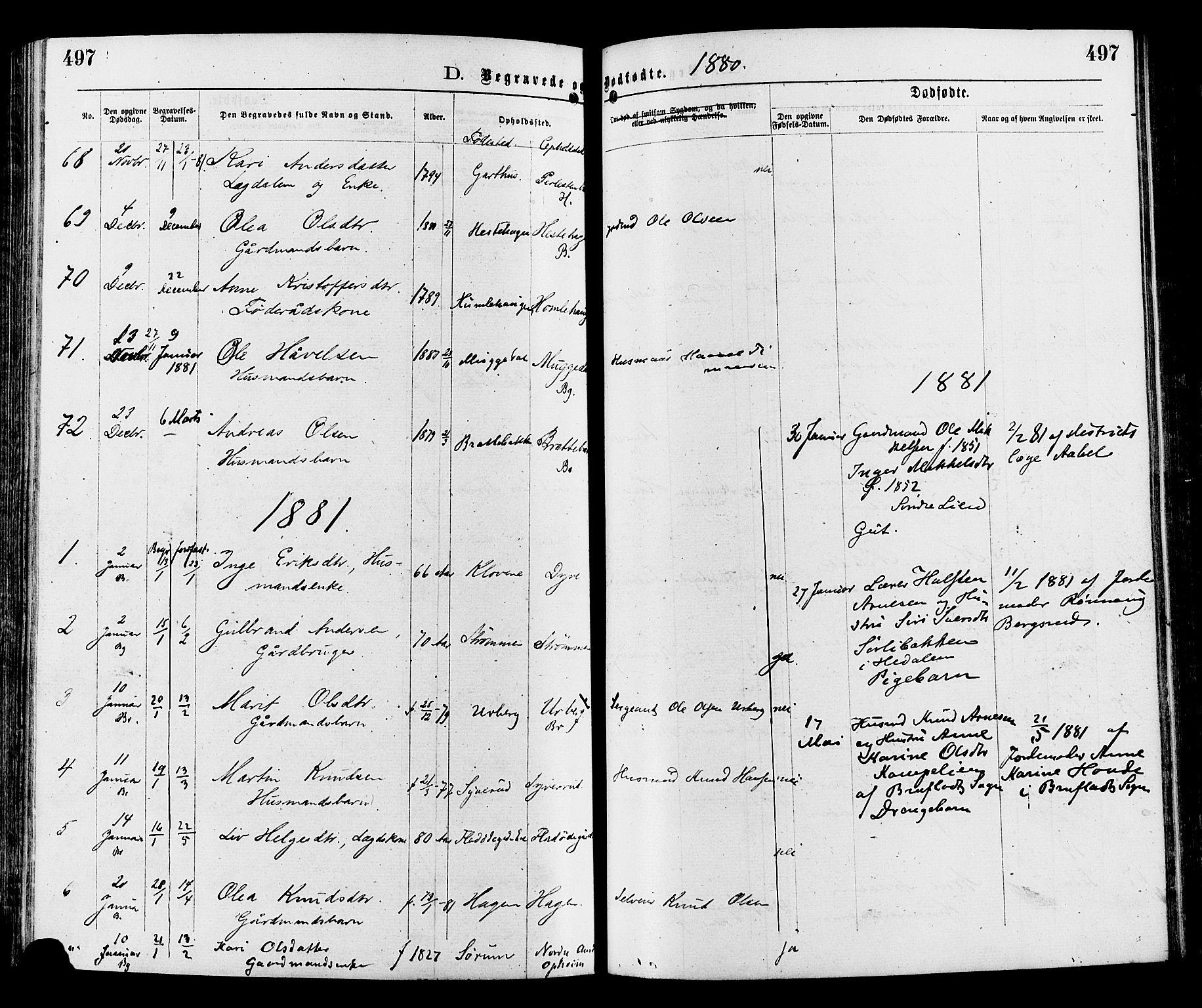 SAH, Sør-Aurdal prestekontor, Ministerialbok nr. 8, 1877-1885, s. 497
