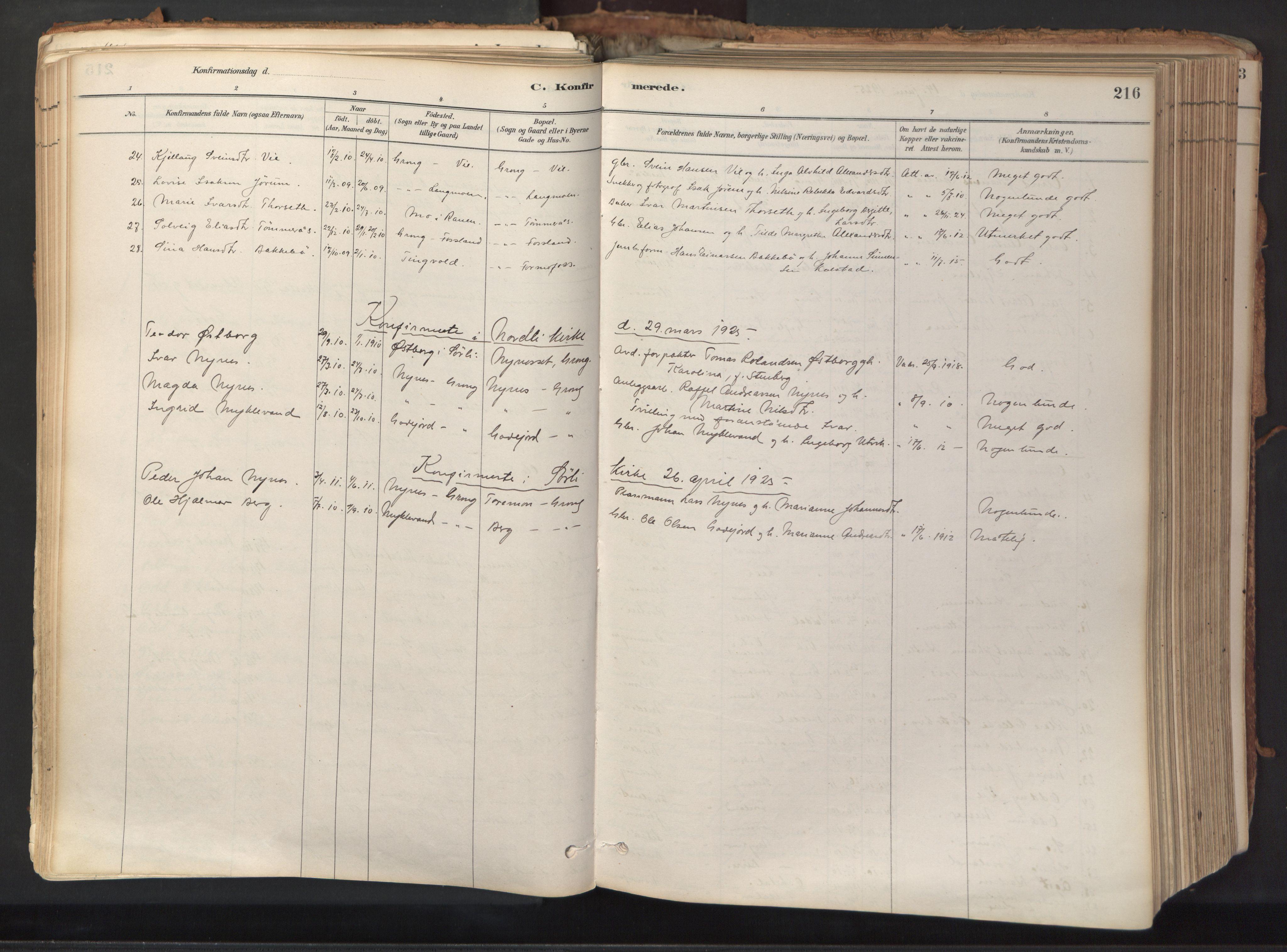 SAT, Ministerialprotokoller, klokkerbøker og fødselsregistre - Nord-Trøndelag, 758/L0519: Ministerialbok nr. 758A04, 1880-1926, s. 216