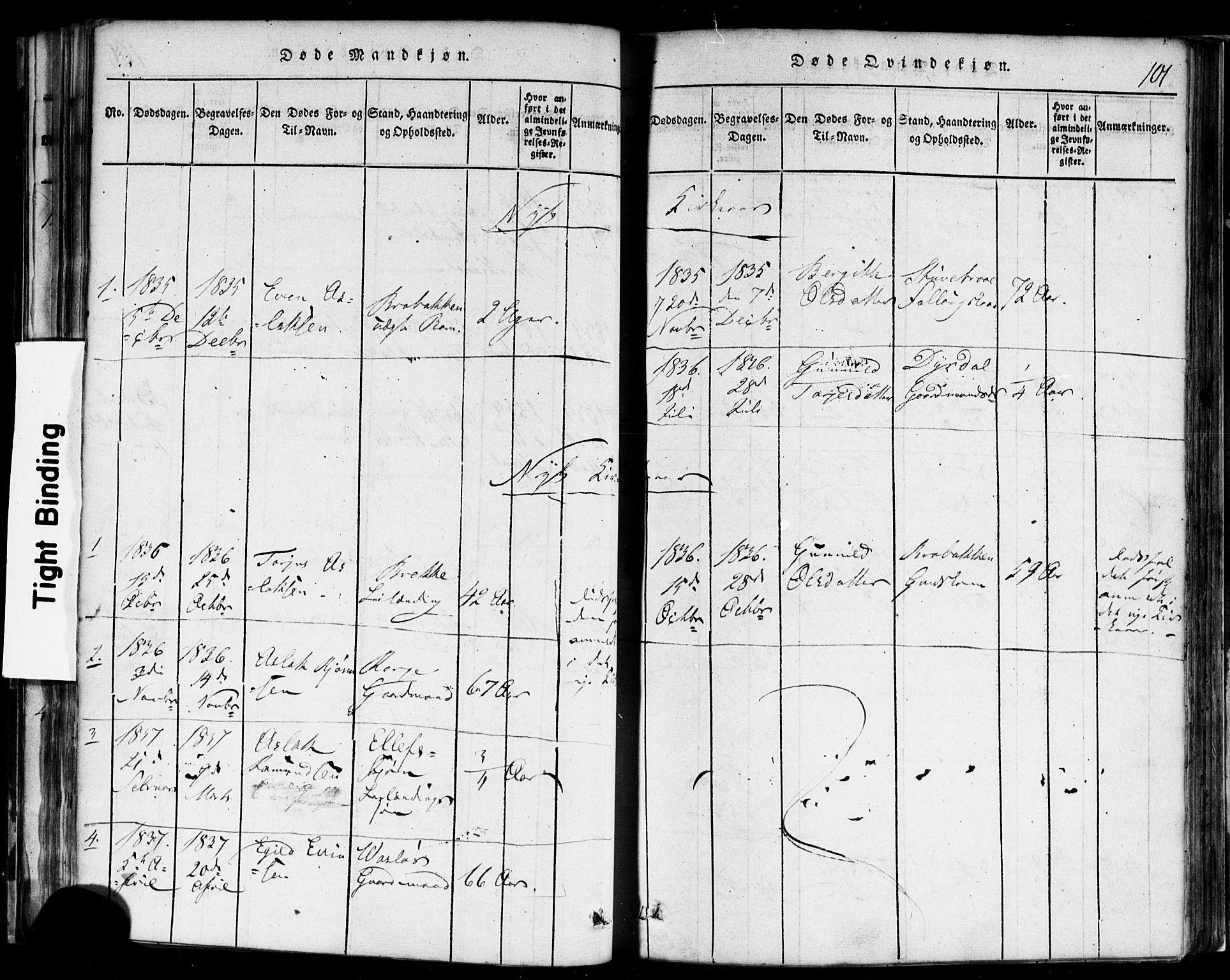 SAKO, Rauland kirkebøker, F/Fa/L0002: Ministerialbok nr. 2, 1815-1860, s. 101