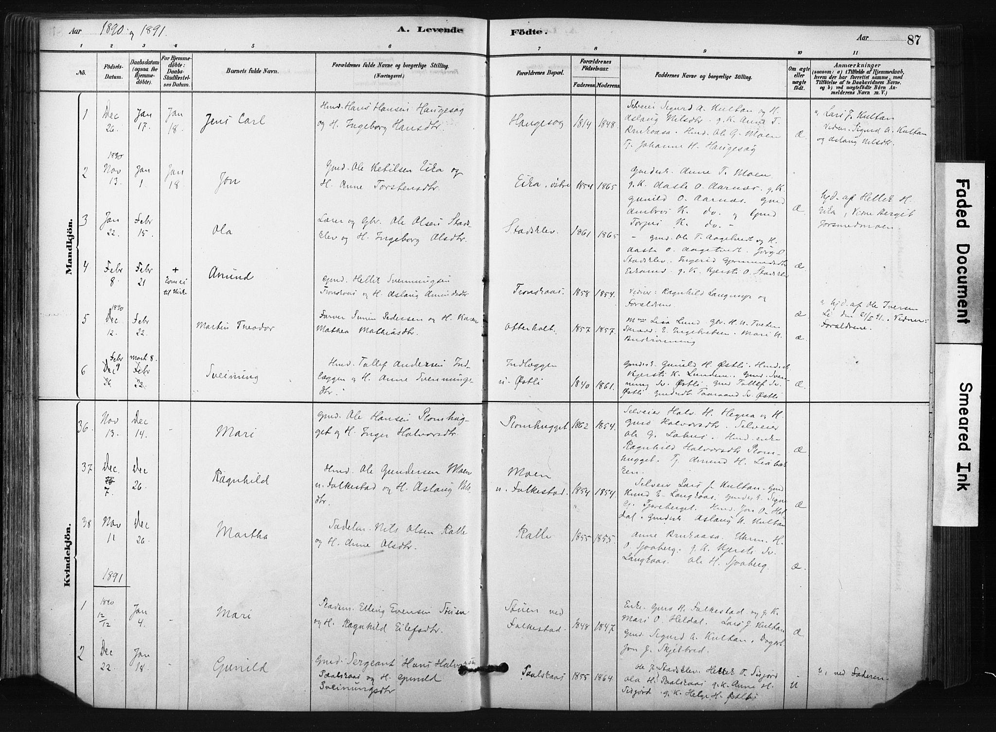 SAKO, Bø kirkebøker, F/Fa/L0010: Ministerialbok nr. 10, 1880-1892, s. 87